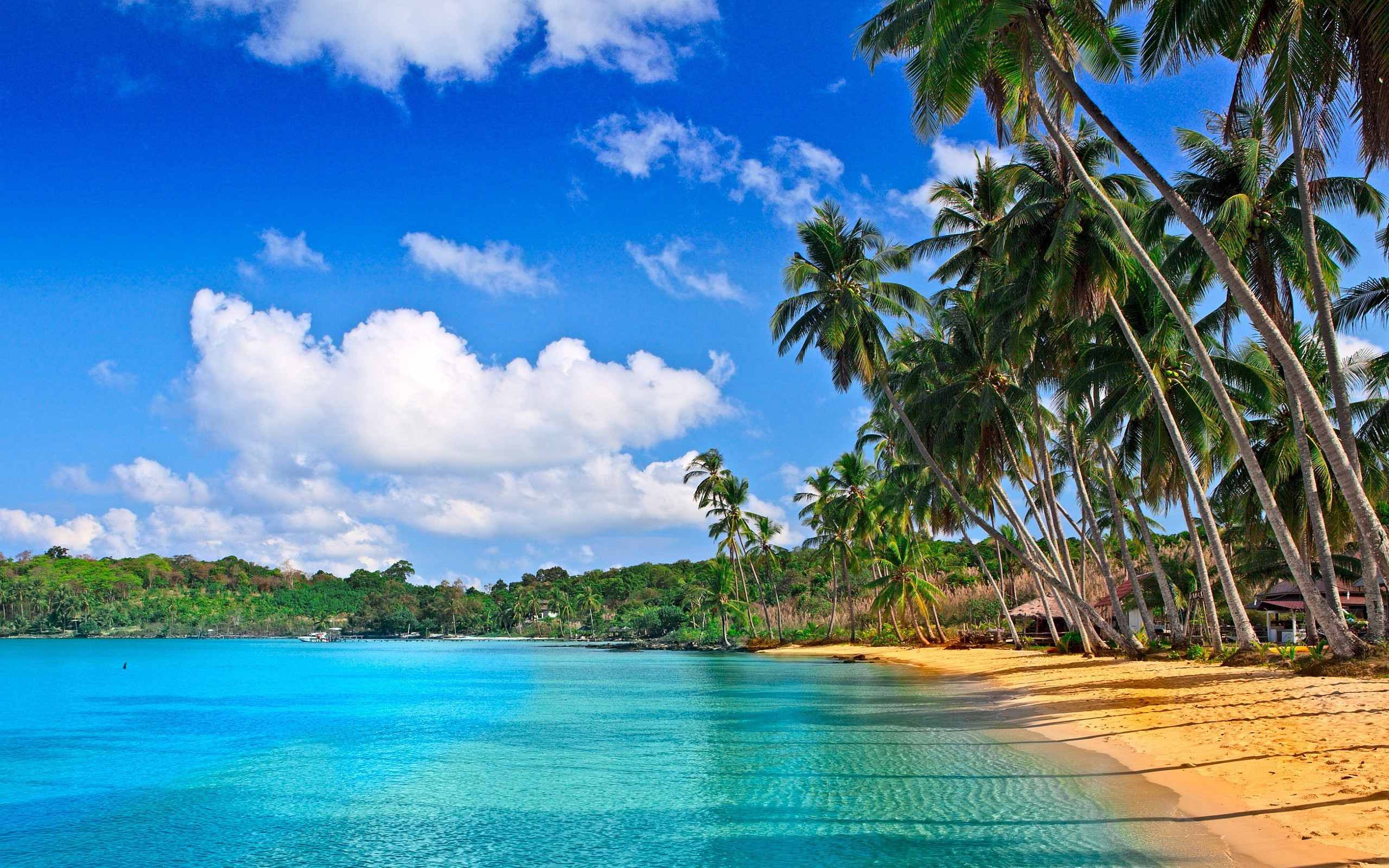 2560x1600 tropical beach wallpapers hd