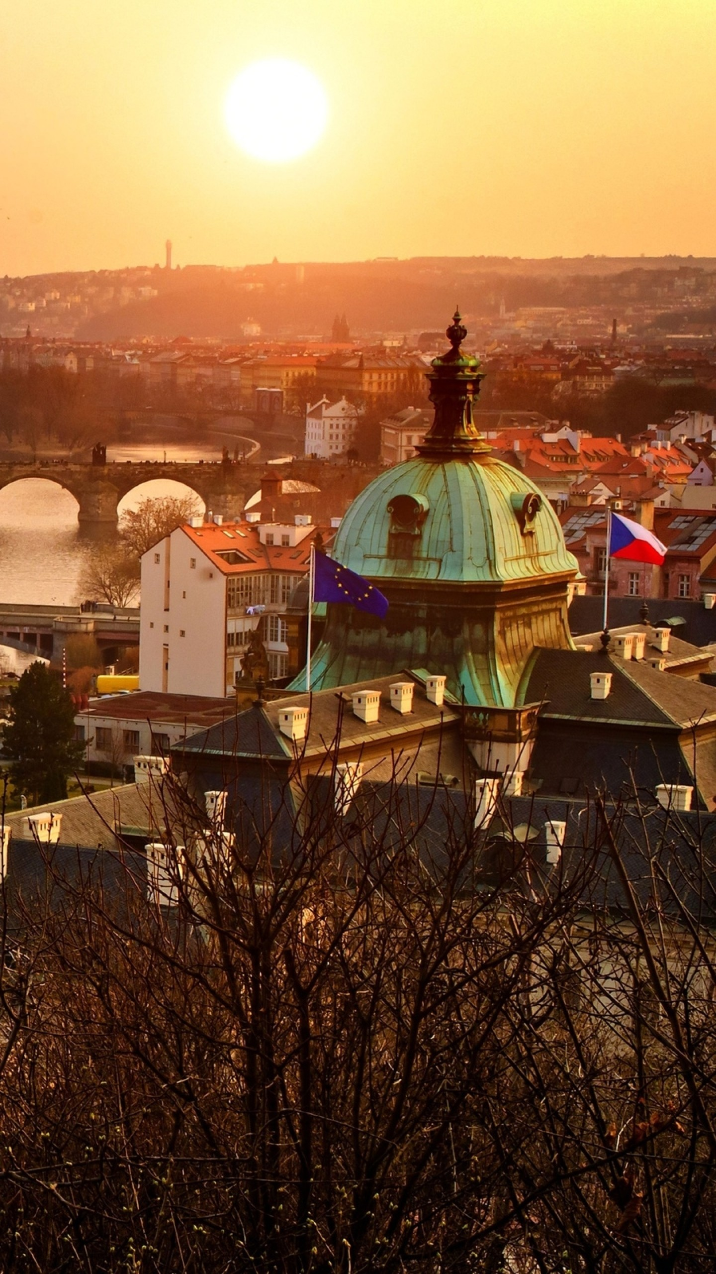 1440x2560  Wallpaper old town, czech republic, czech, old, prague, night,