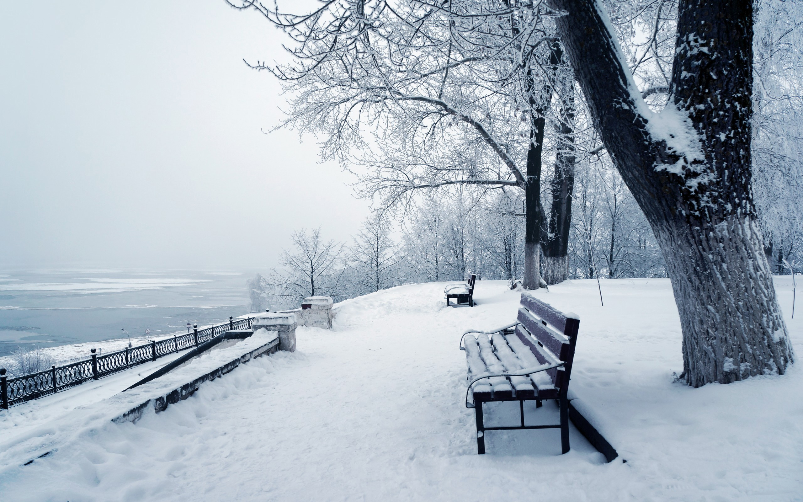 2560x1600 Winter-Iphone-Wallpaper-Download-Free