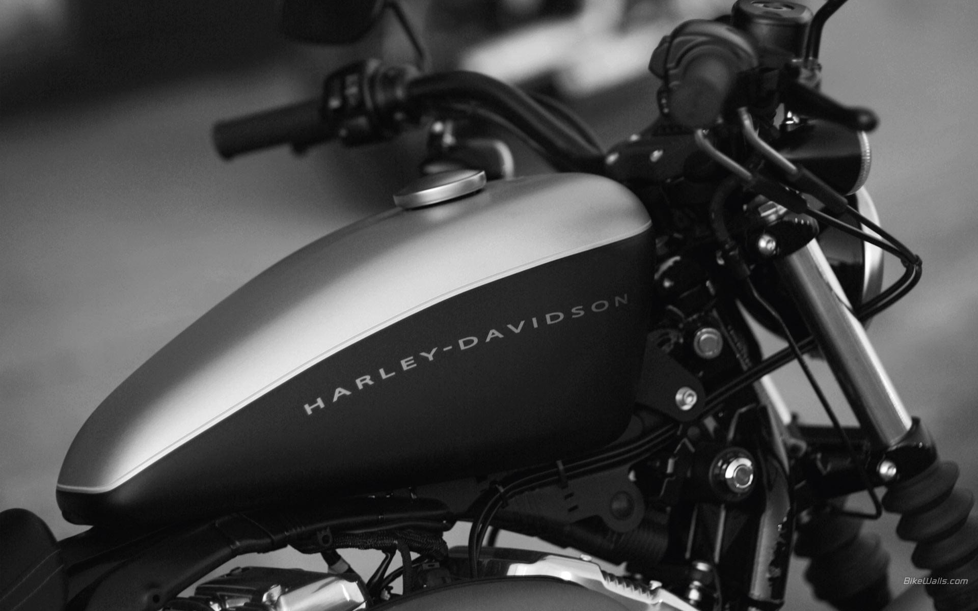 Harley davidson wallpaper hd 74 images 2048x1416 harley davidson wallpaper desktop 23244 hd pictures top voltagebd Images