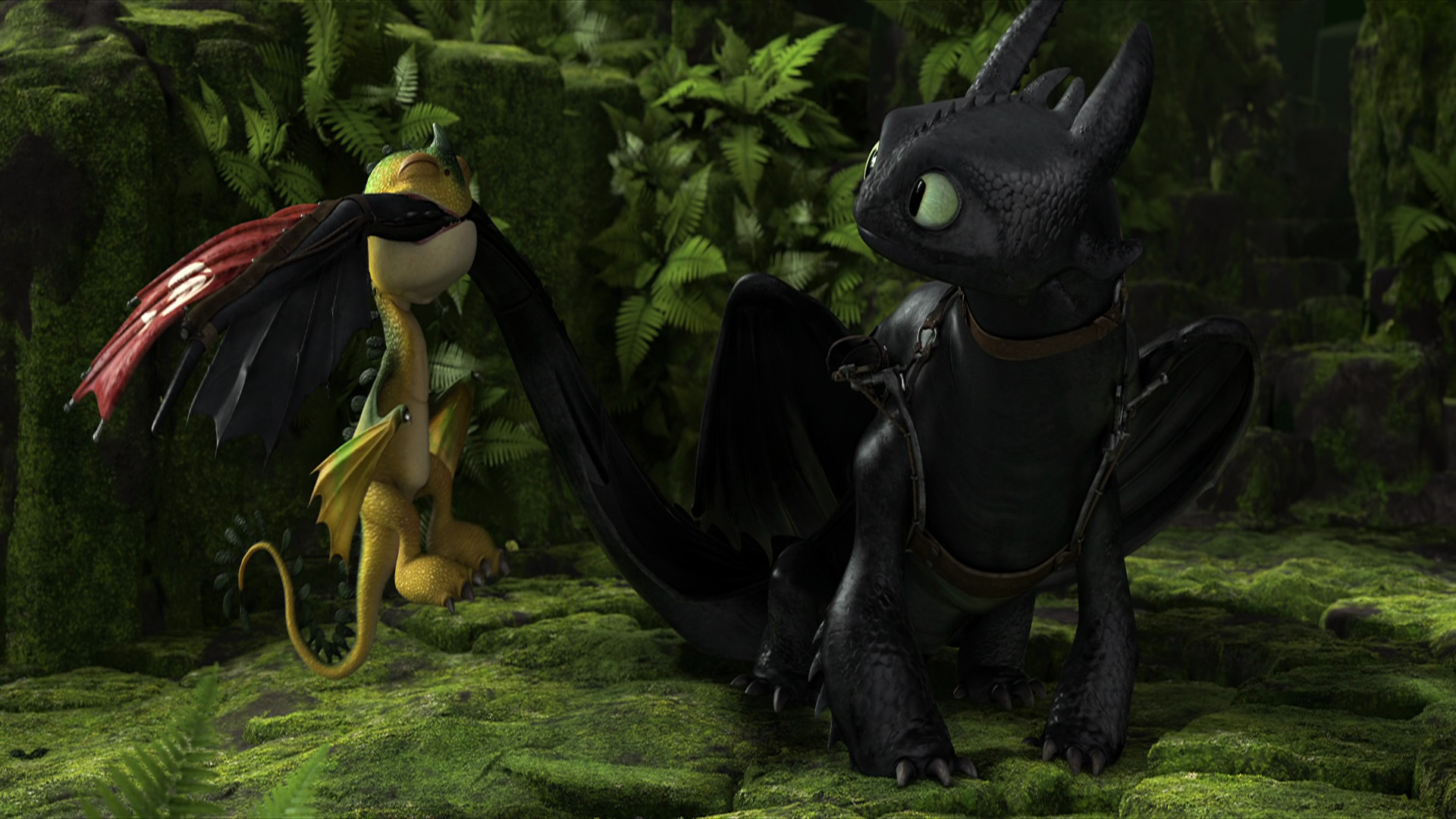 Pictures of the dragons in how to train your dragon Book of Dragons (How to Train Your Dragon TV Maggie)