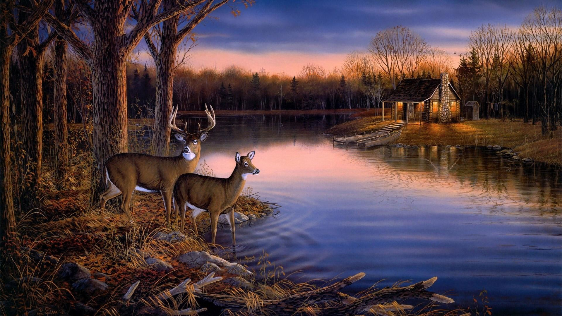 1920x1080 Deer Hunting Wallpaper Border | ... ,landscape wallpaper Picture   1080p hd wallpaper