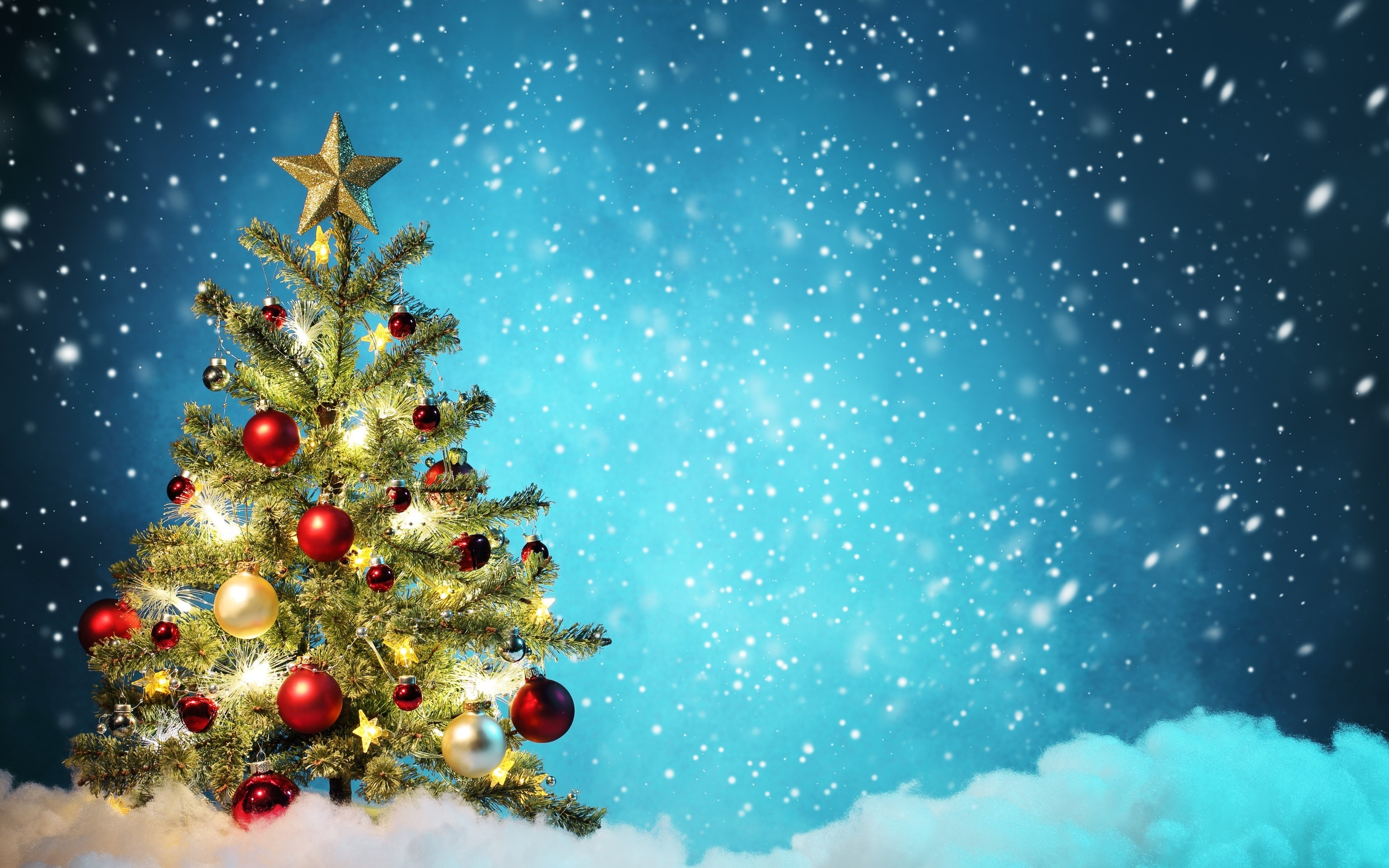 Christmas Tree Background 50 Images