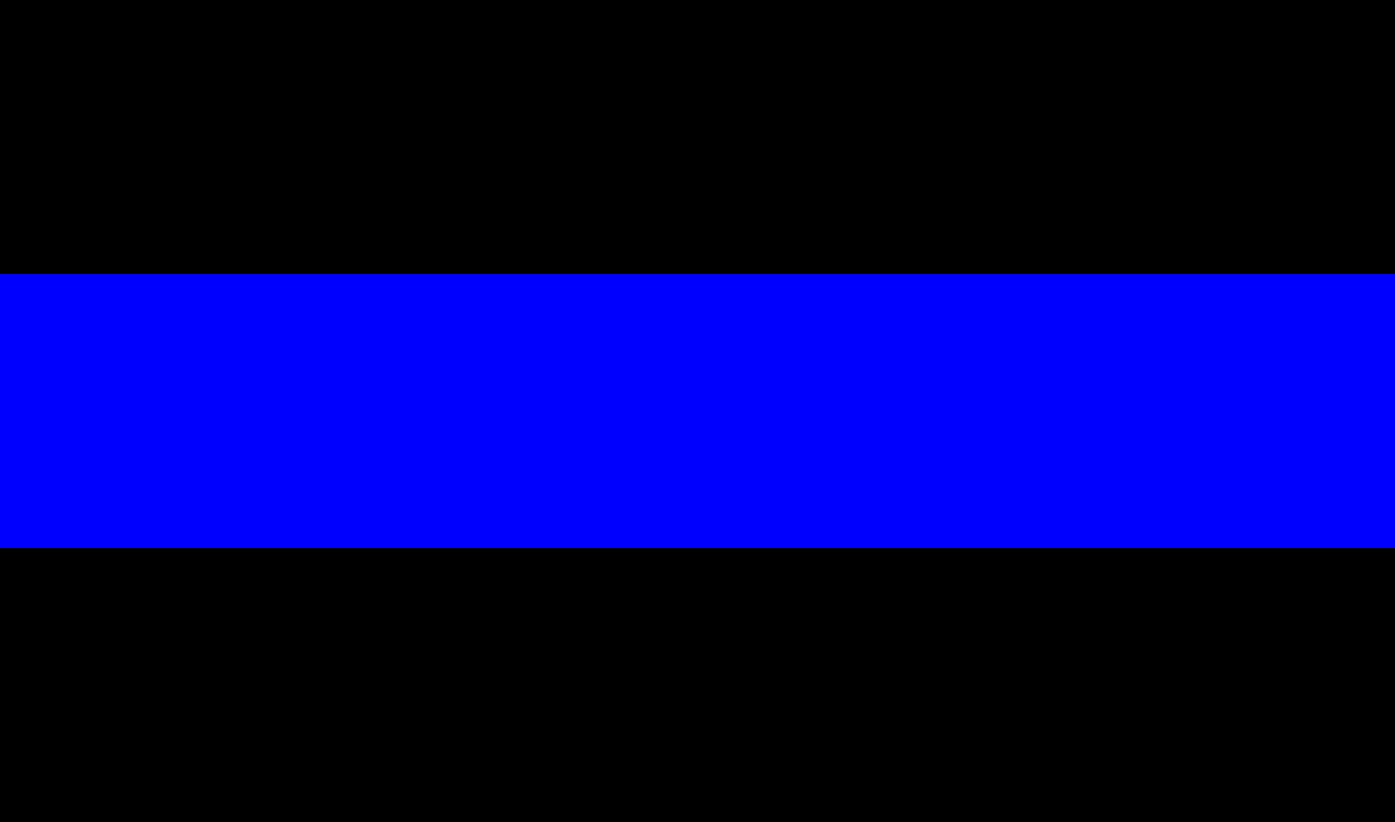 thin blue line Flakita's novelties 3x5 us usa police thin blue line flag honoring our men and women of law enforcement, black, white and blue american embroidered.
