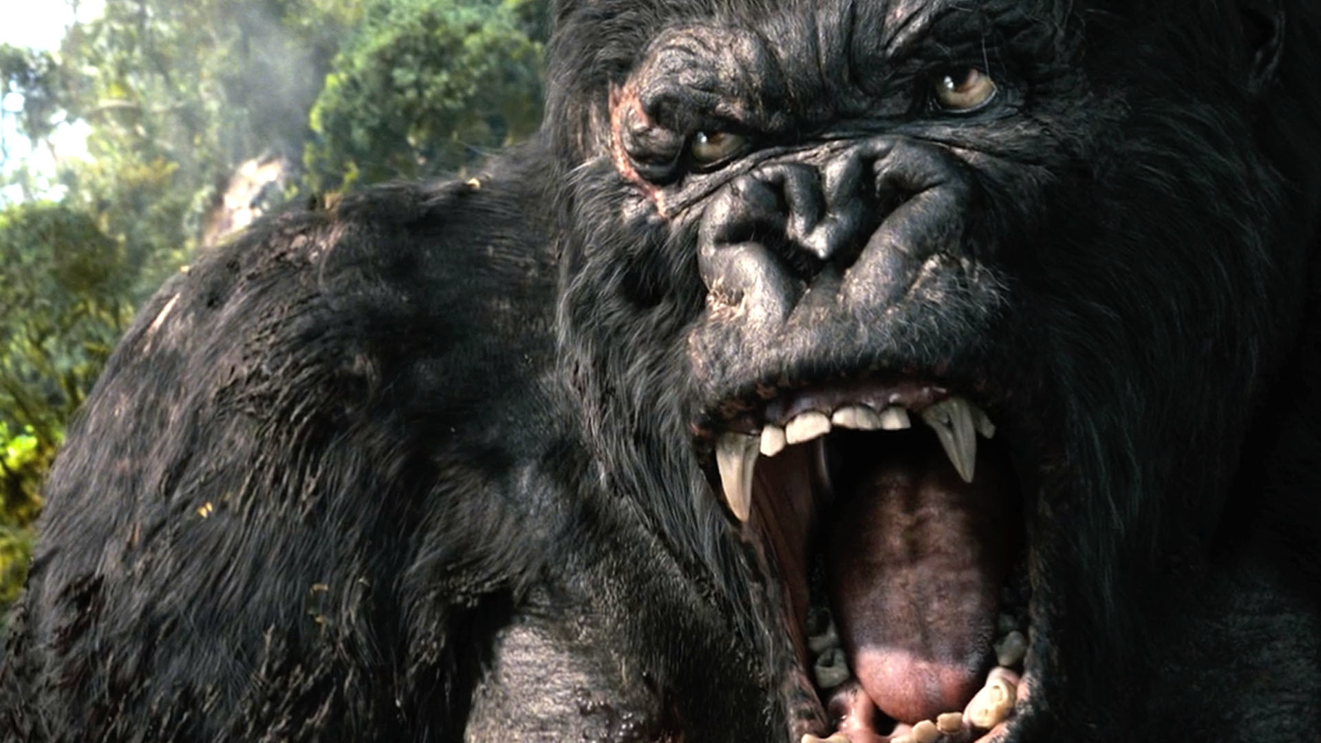 Kong: King Kong Wallpaper (67+ Images