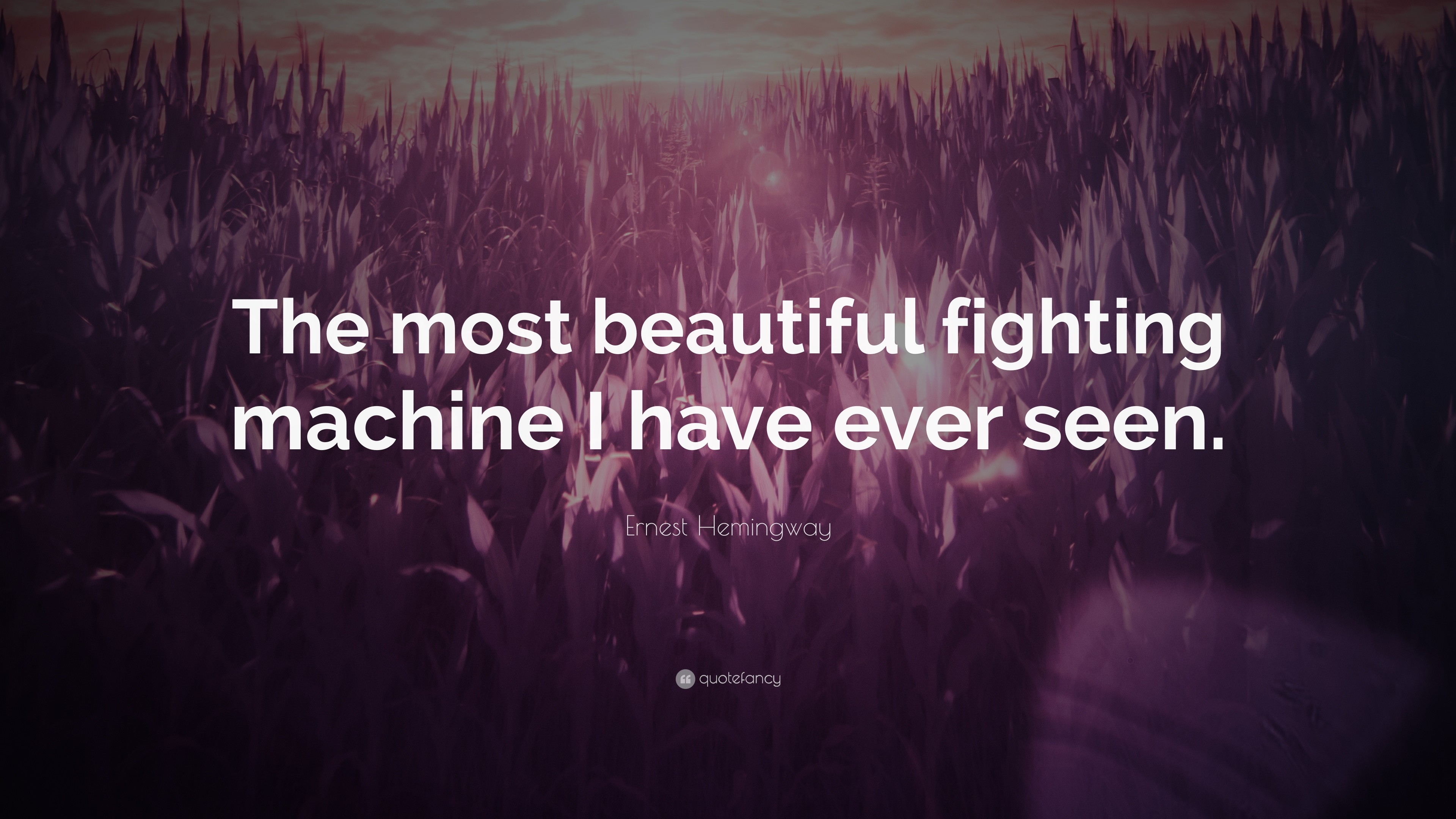 "3840x2160 Ernest Hemingway Quote: ""The most beautiful fighting machine I have ever  seen."""