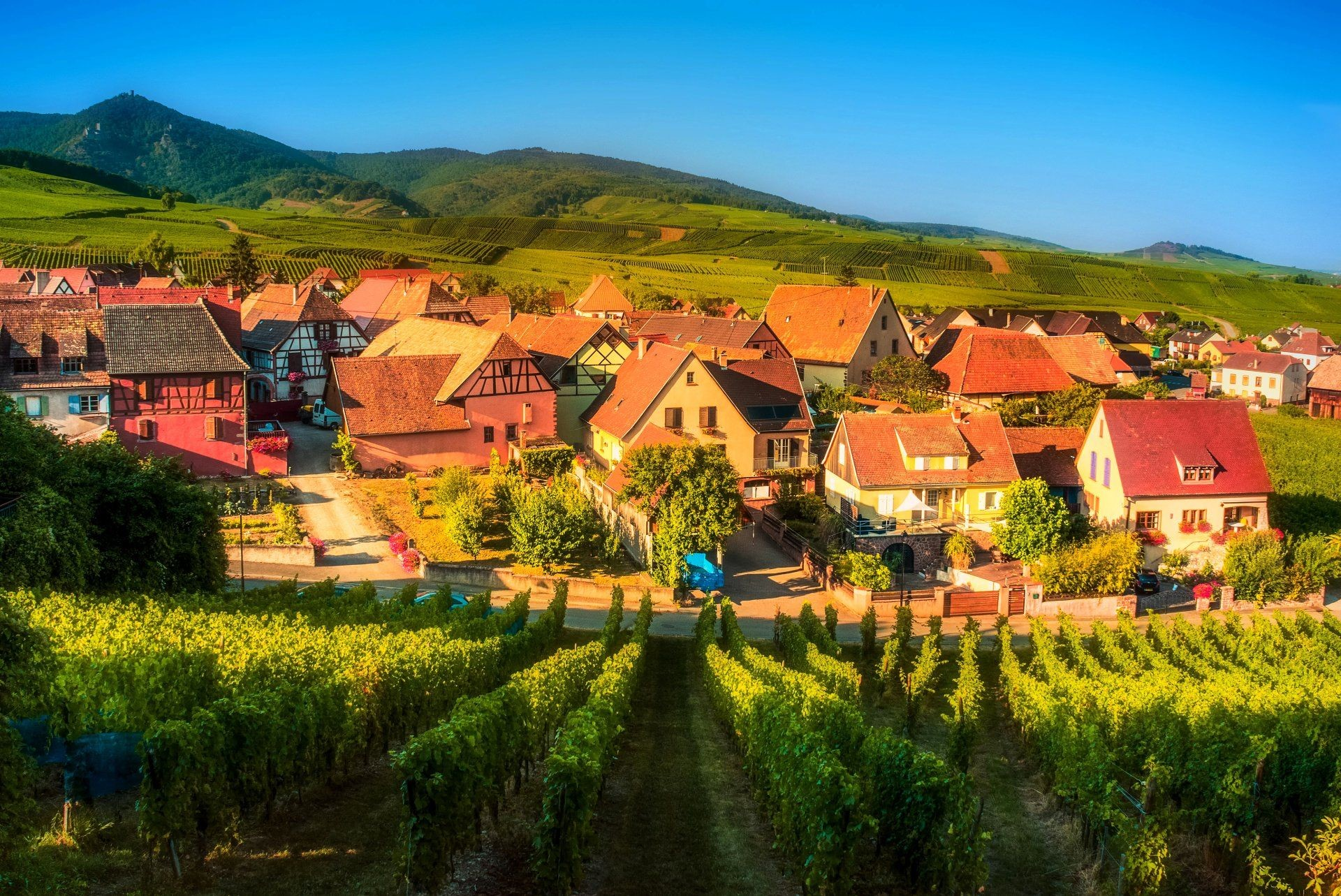 1920x1283 Man Made Village House France Mountain Landscape Tree Vineyard Wallpaper