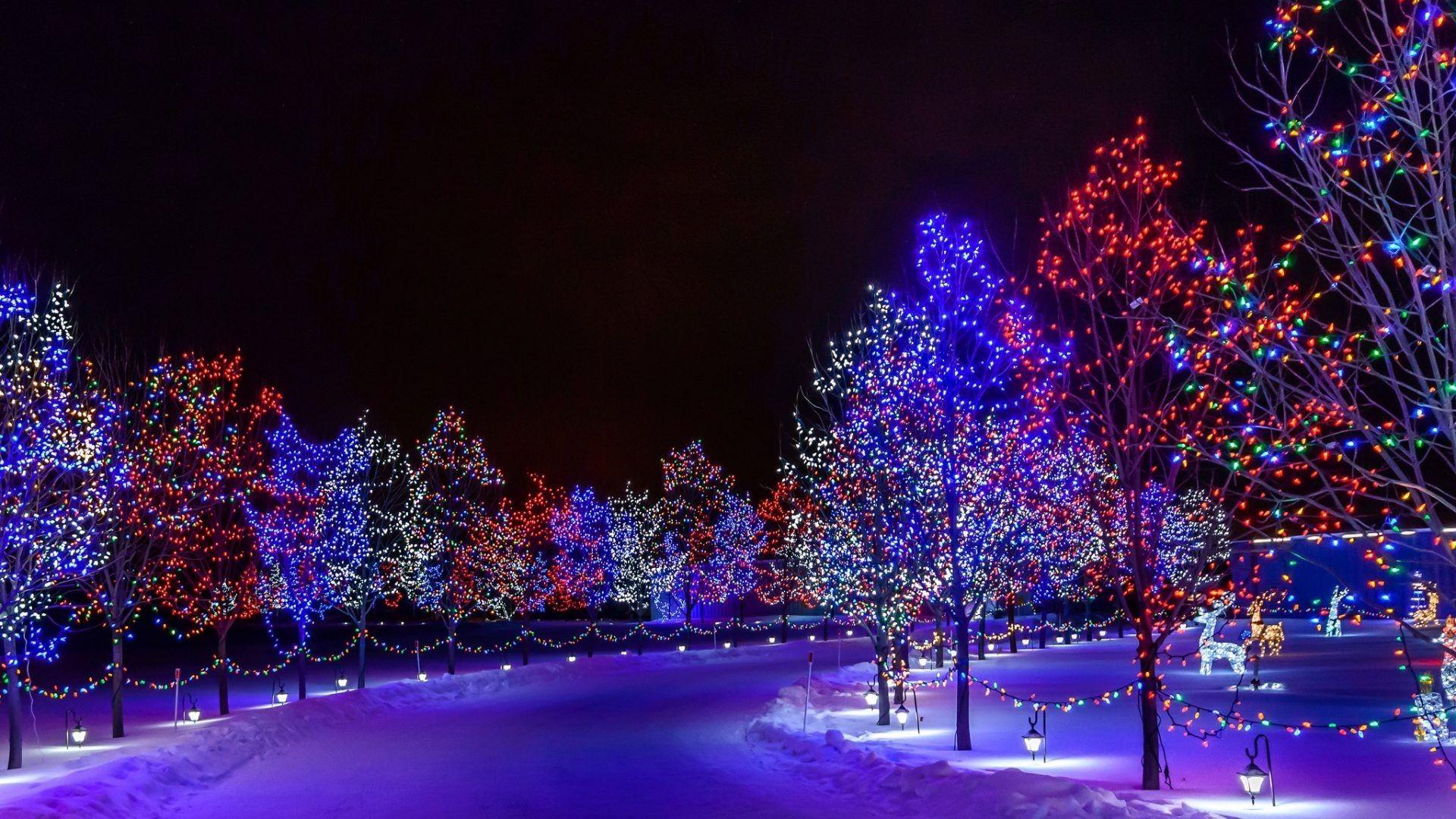 Blinking Christmas Lights Wallpaper 59 Images