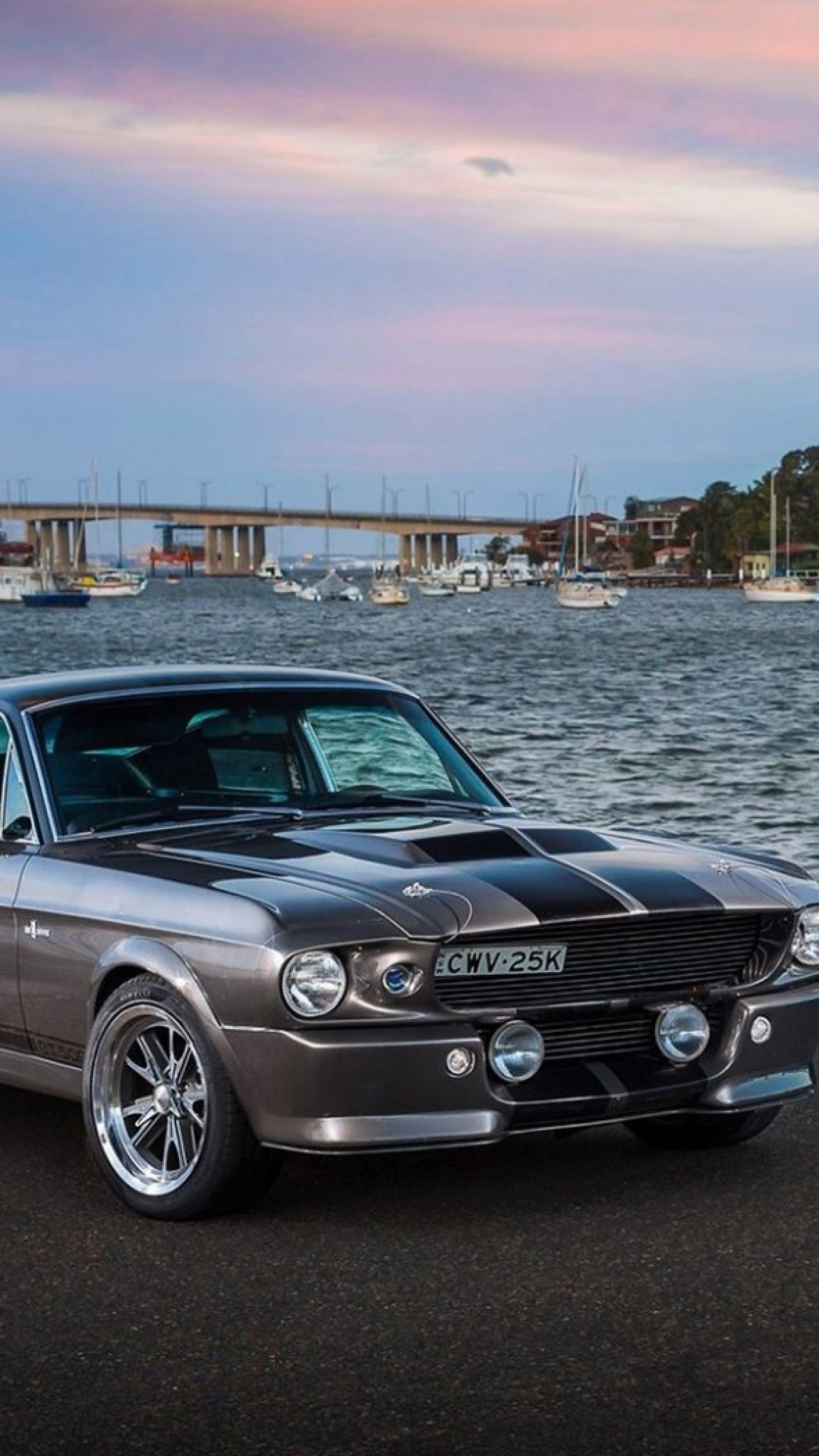 1440x2560 preview wallpaper ford mustang silver sea 1440x2560