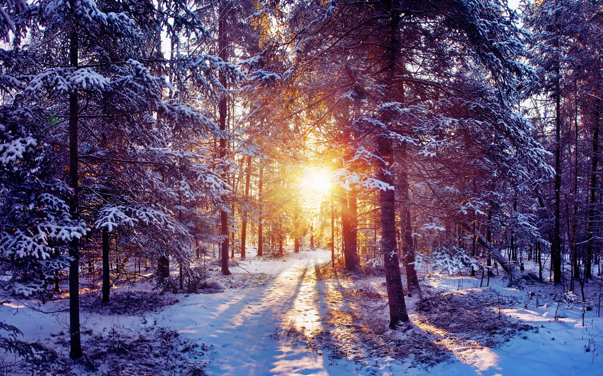 scenic winter beautiful wallpapers - photo #23