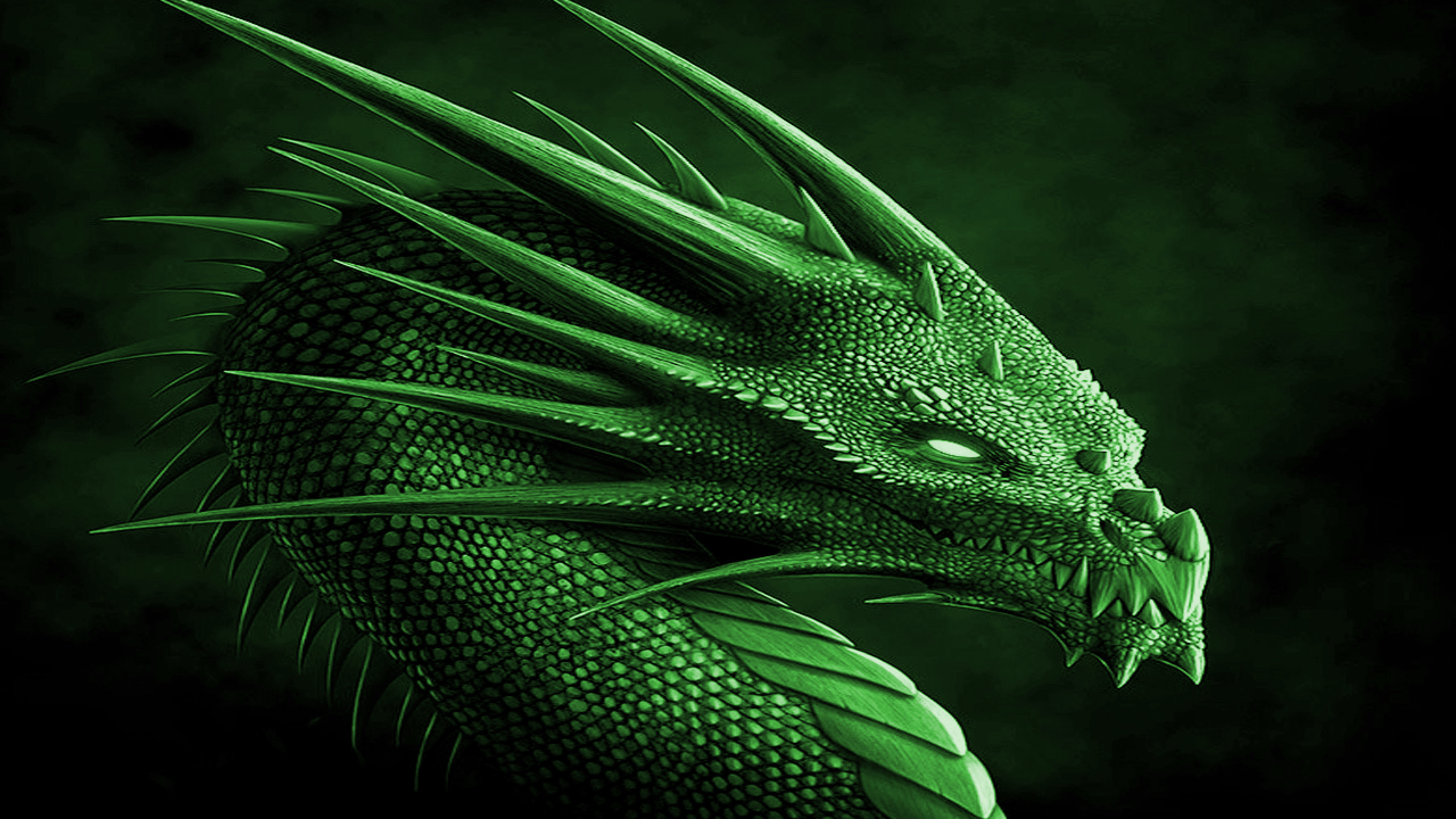 2560x1440 Razer Neon Green Wallpapers