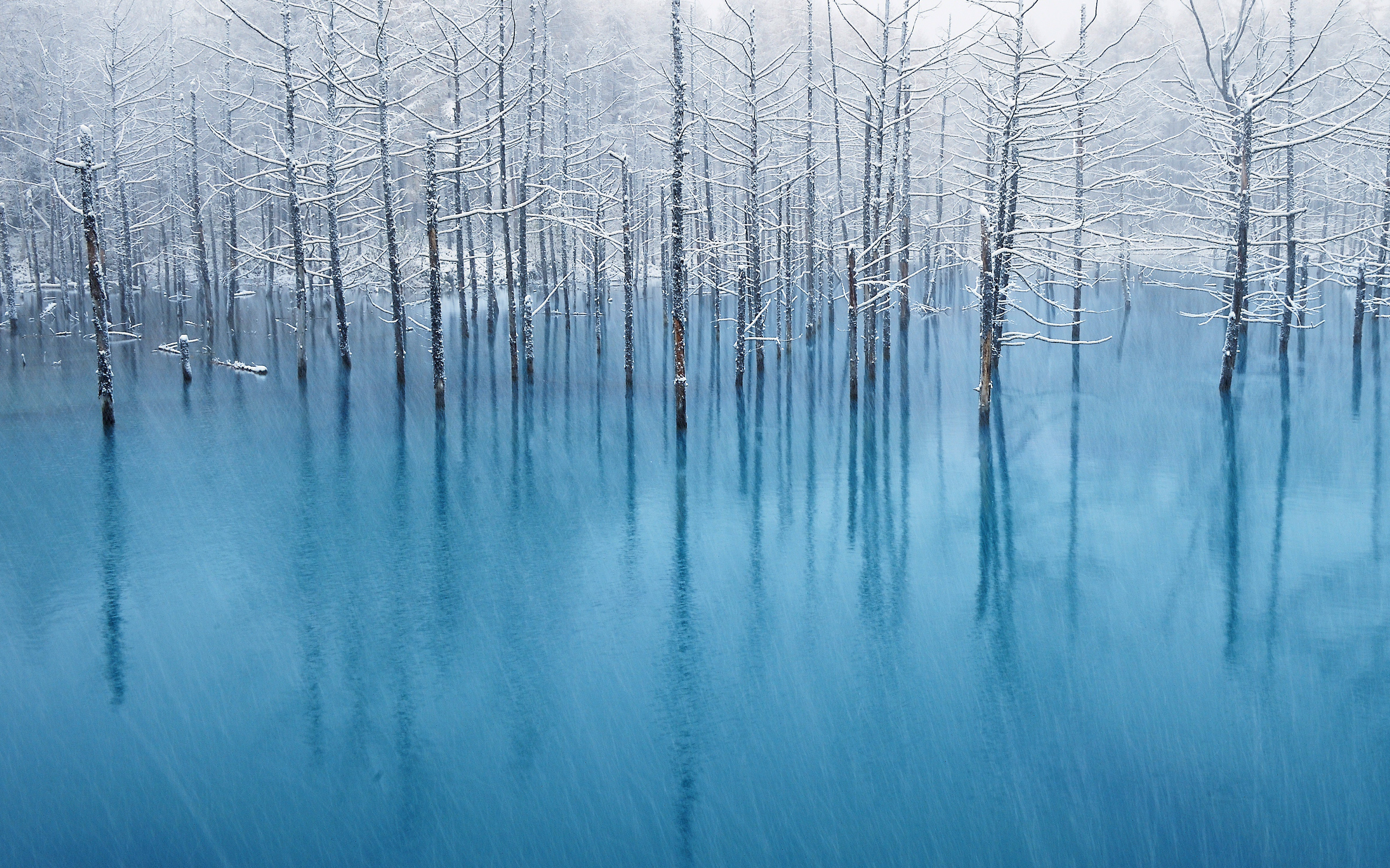 Nature backgrounds for mac 68 images - Nature wallpaper collection zip ...