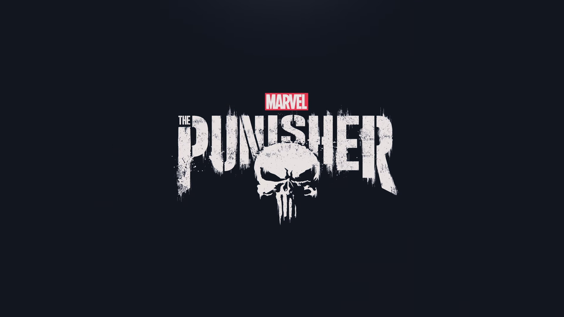 1920x1080 Fernsehserien - The Punisher Wallpaper
