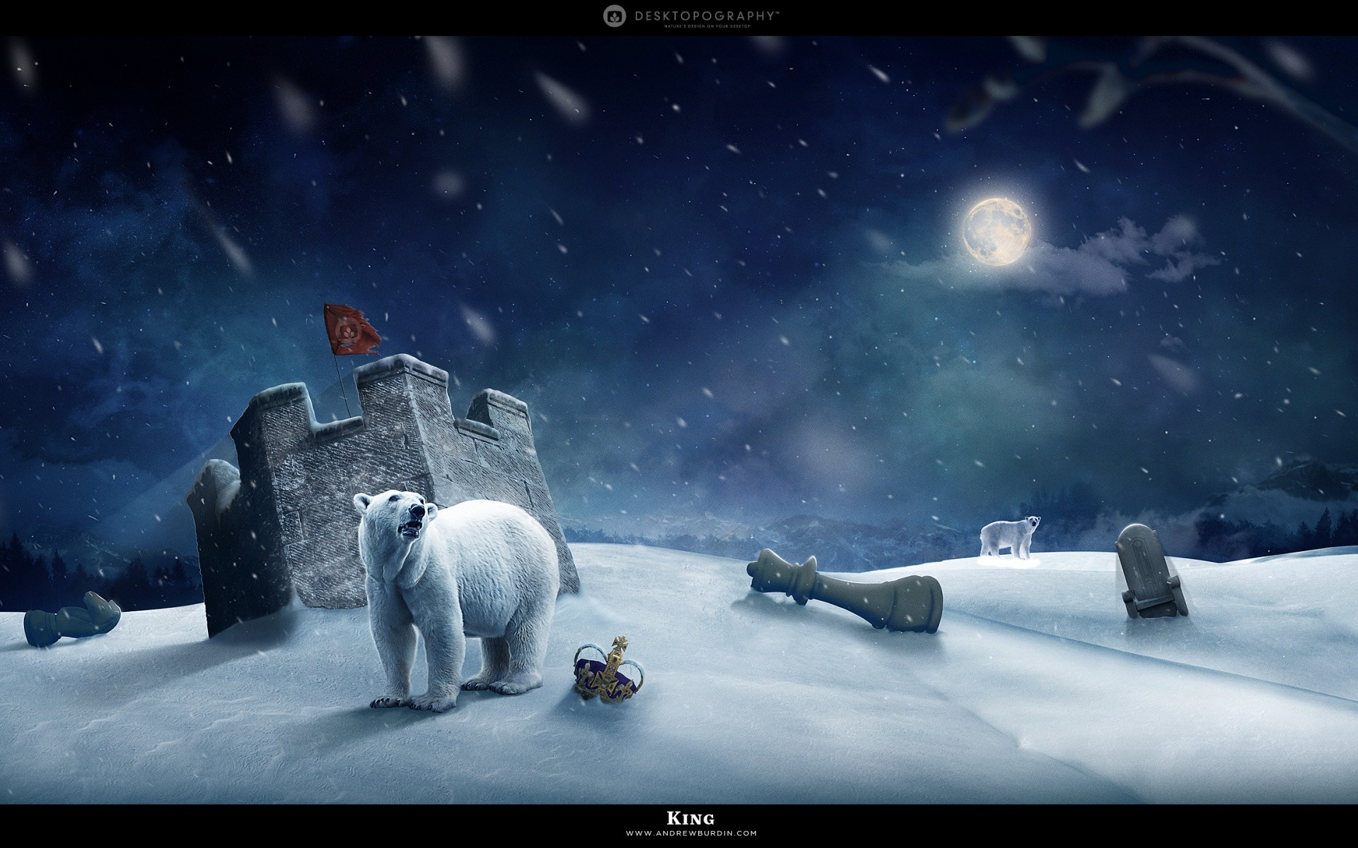 1920x1200 Polar Bear #Winter #Night #creative #wallpapers
