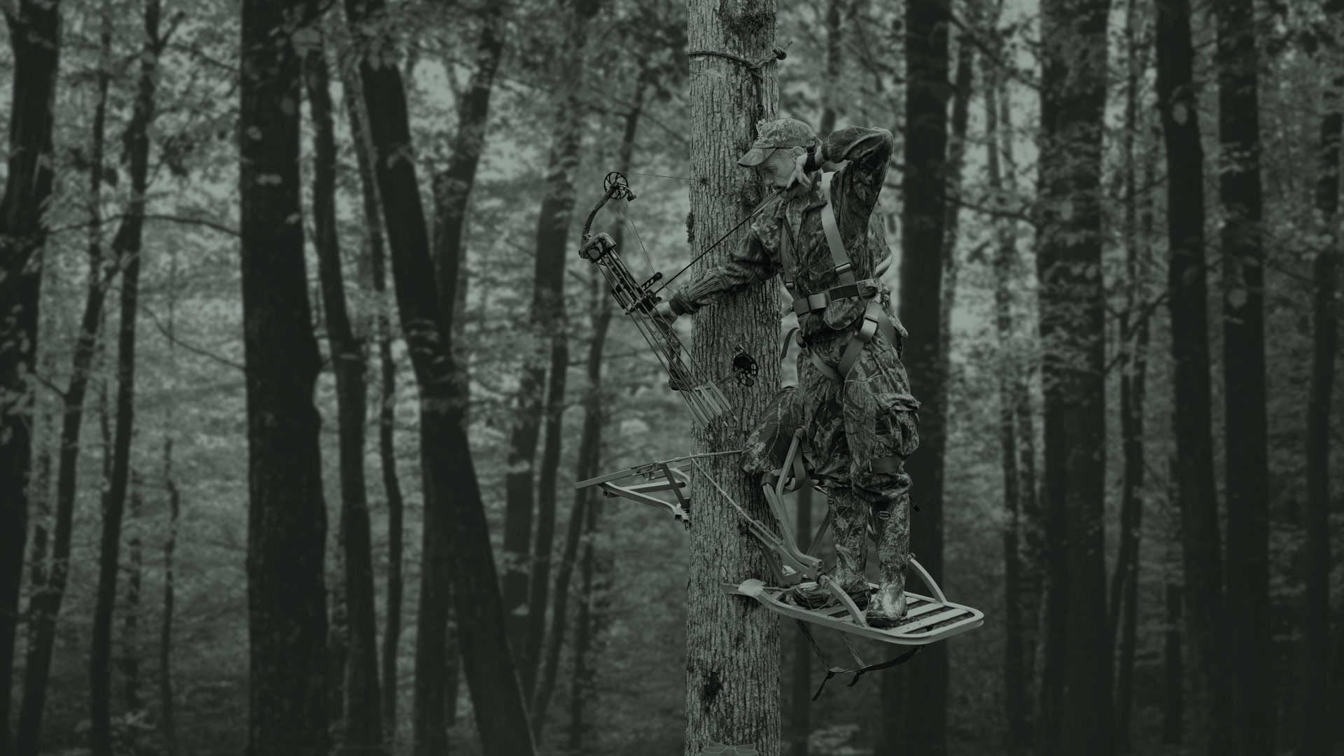 Bowhunting Wallpaper (59+ images)