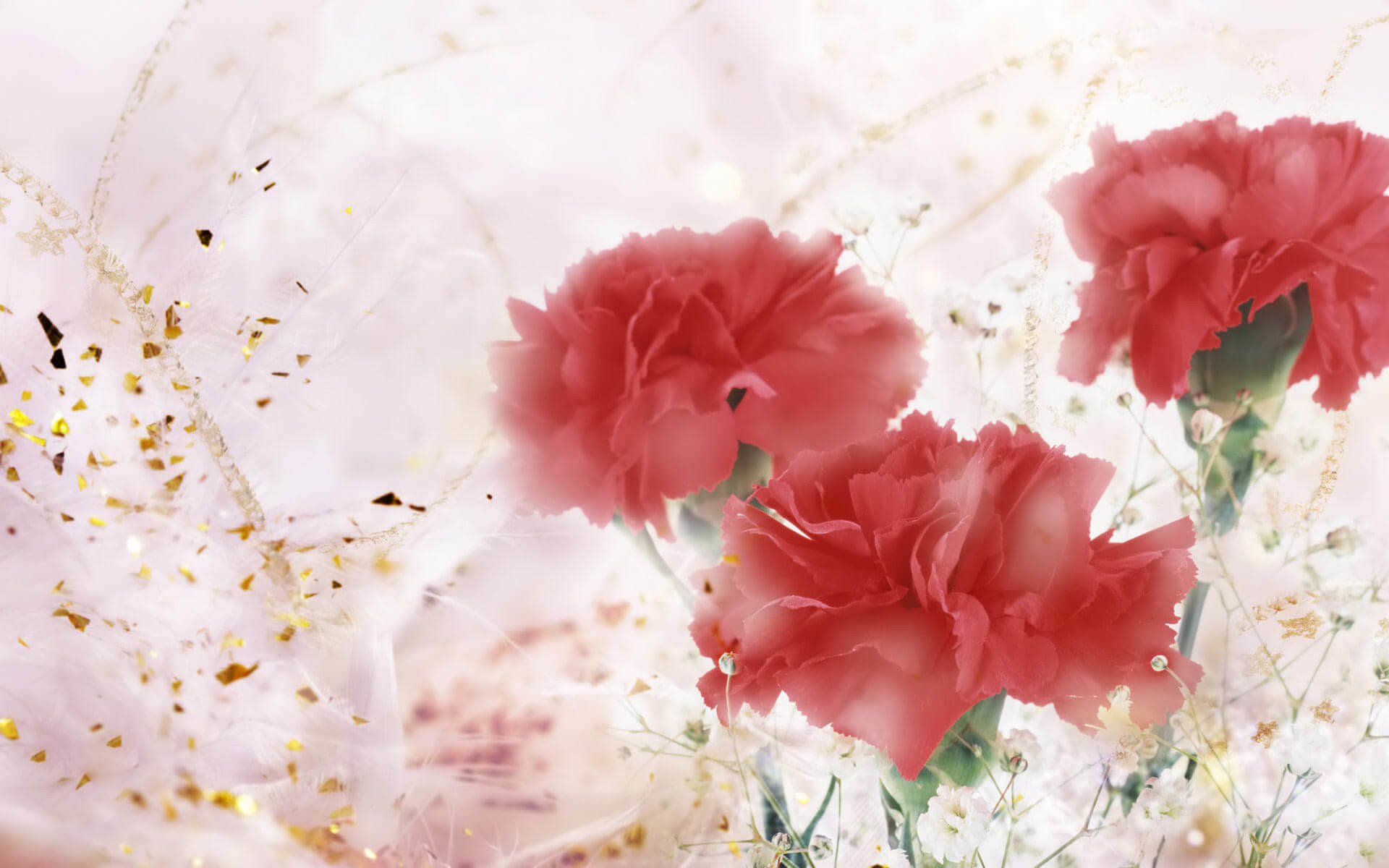 1920x1200 ... Gifts-Flowers-Valentine-desktop-backgrounds ...