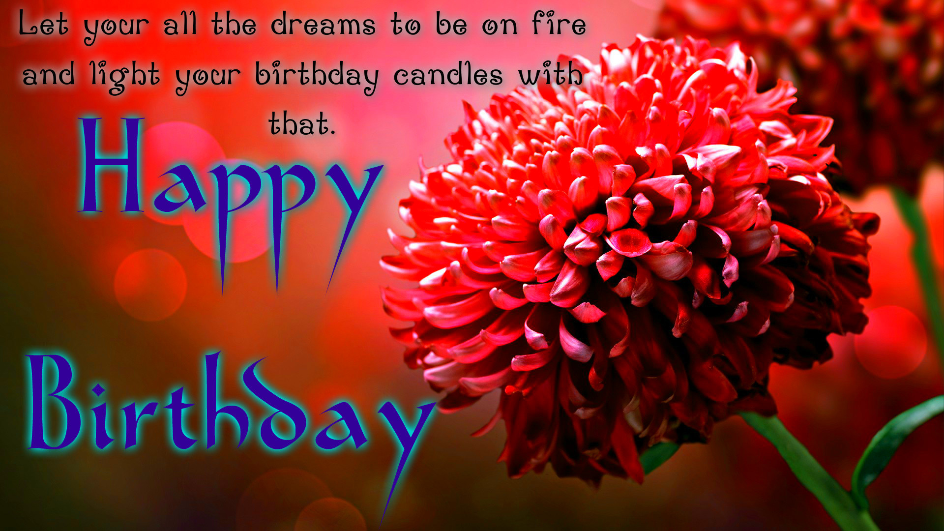 1920x1200 Advance Happy Birthday Wishes Pictures Wallpapers And Quotes Wishing Is Always Good Sign Explore