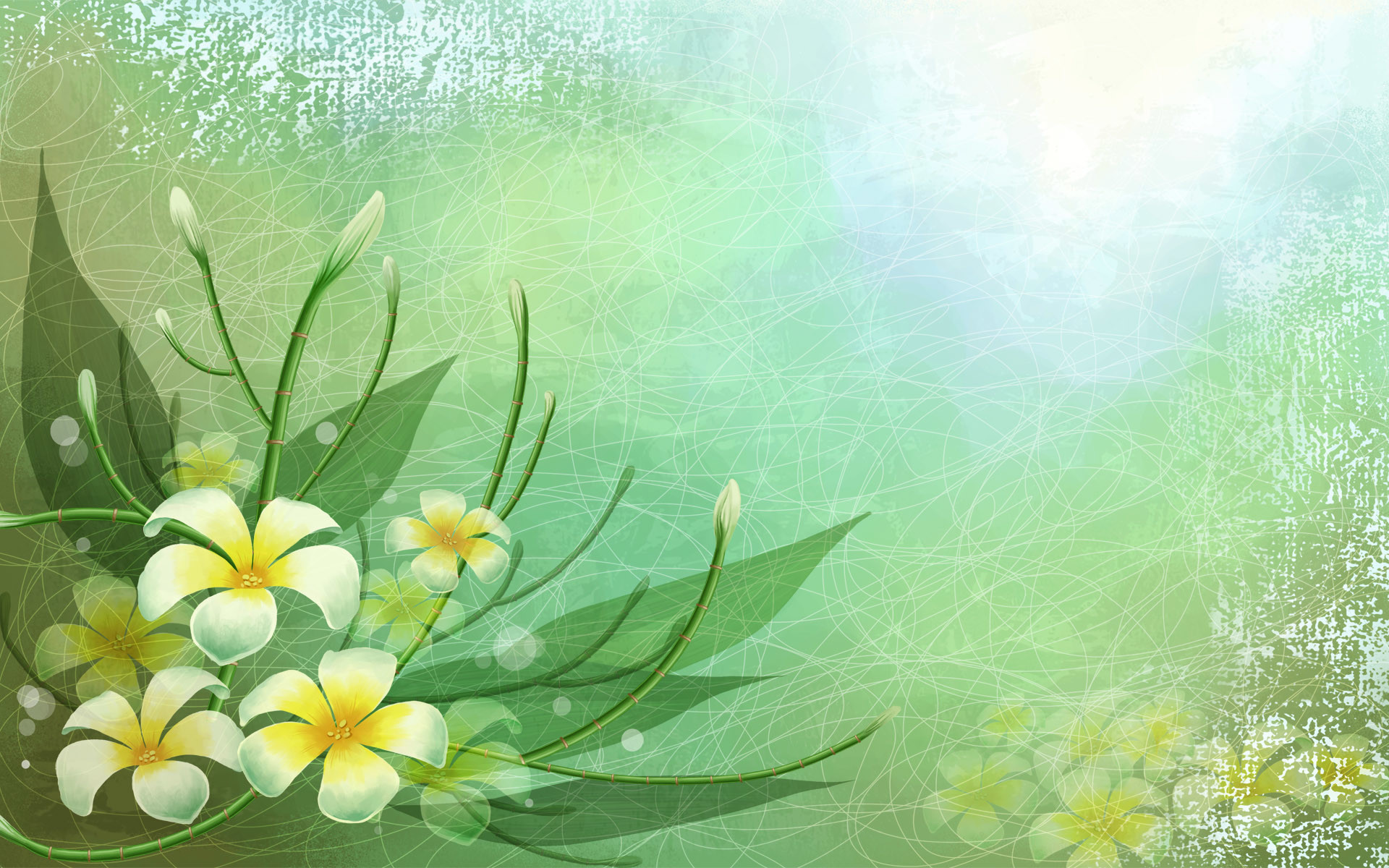 1920x1200 Vector Art Images Flower Cool Background Wallpapers Resolution : Filesize :  kB, Added on December Tagged : vector art