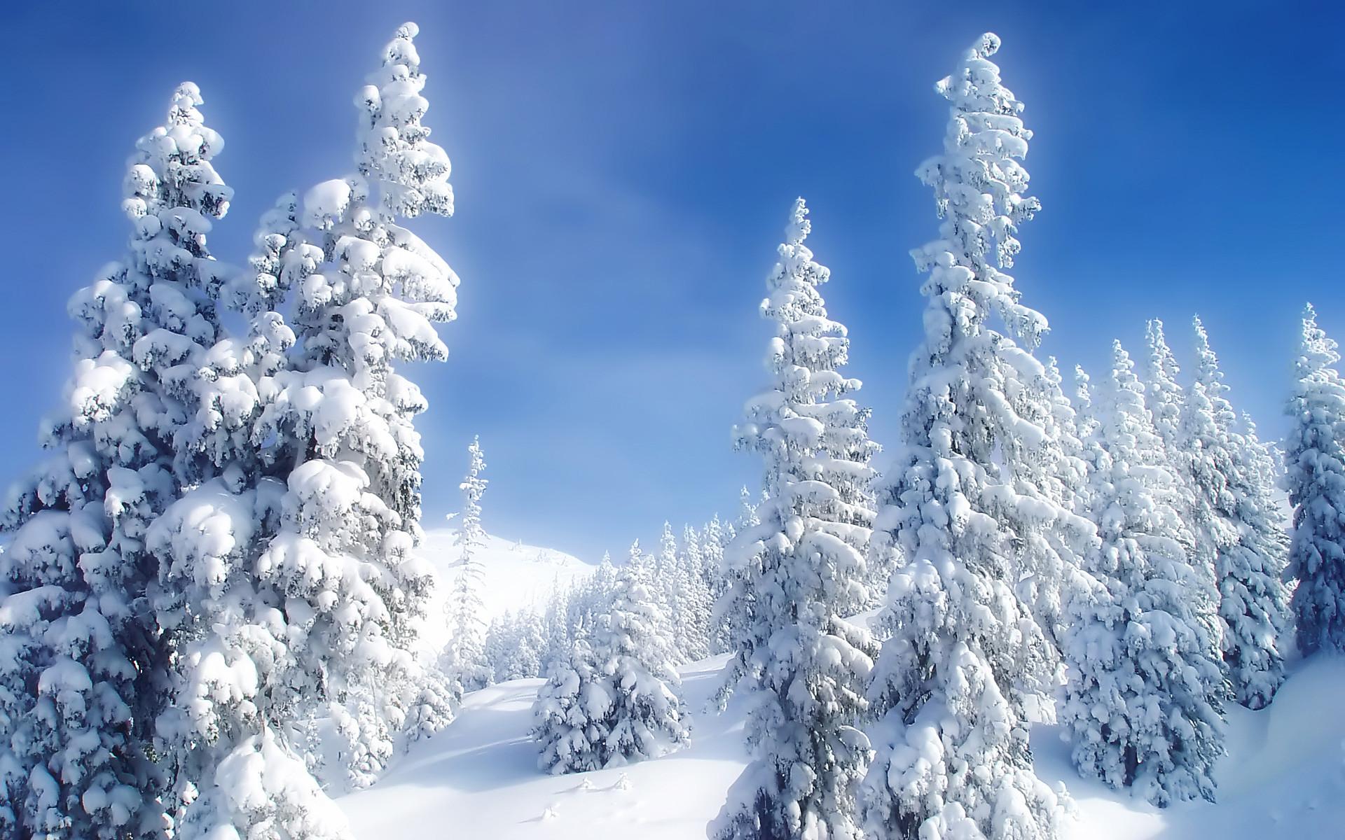 Winter Scenes Wallpaper (55+ images)