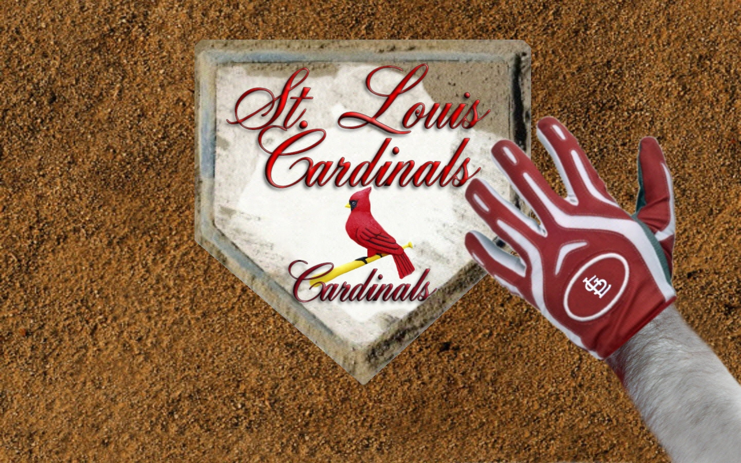 2560x1600 Free Cardinals Wallpaper