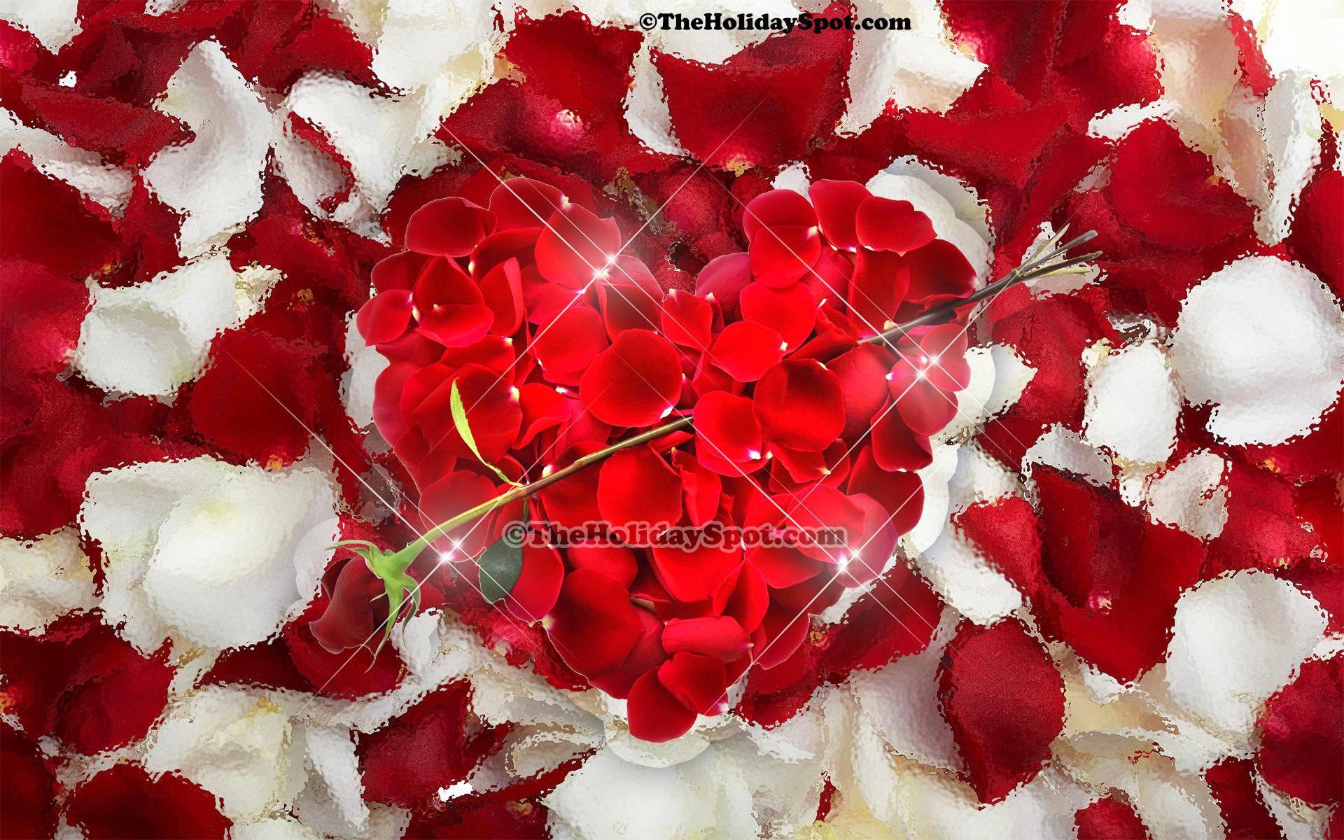 Valentine Kitten Wallpaper 54 Images