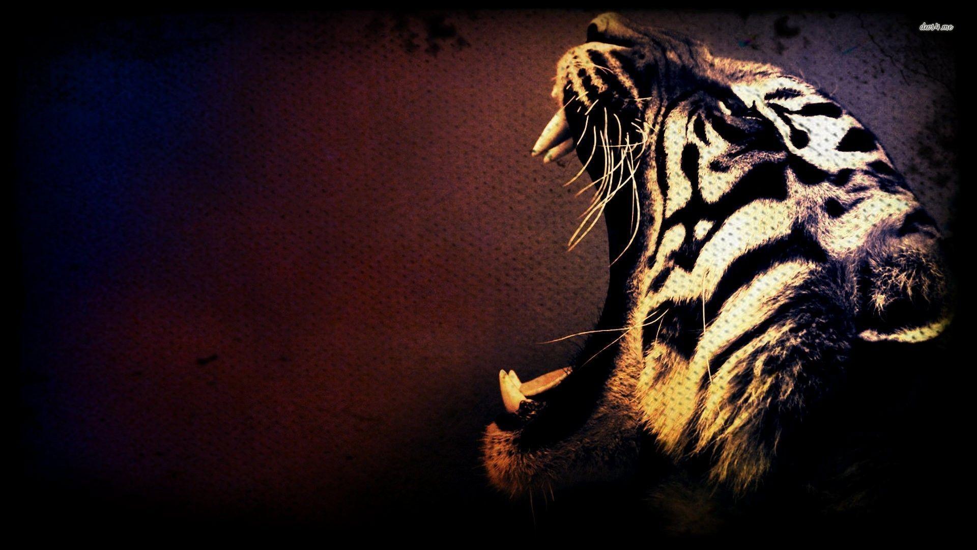 Desktop Hd Tiger Attack Pics: HD Tiger Backgrounds (75+ Images