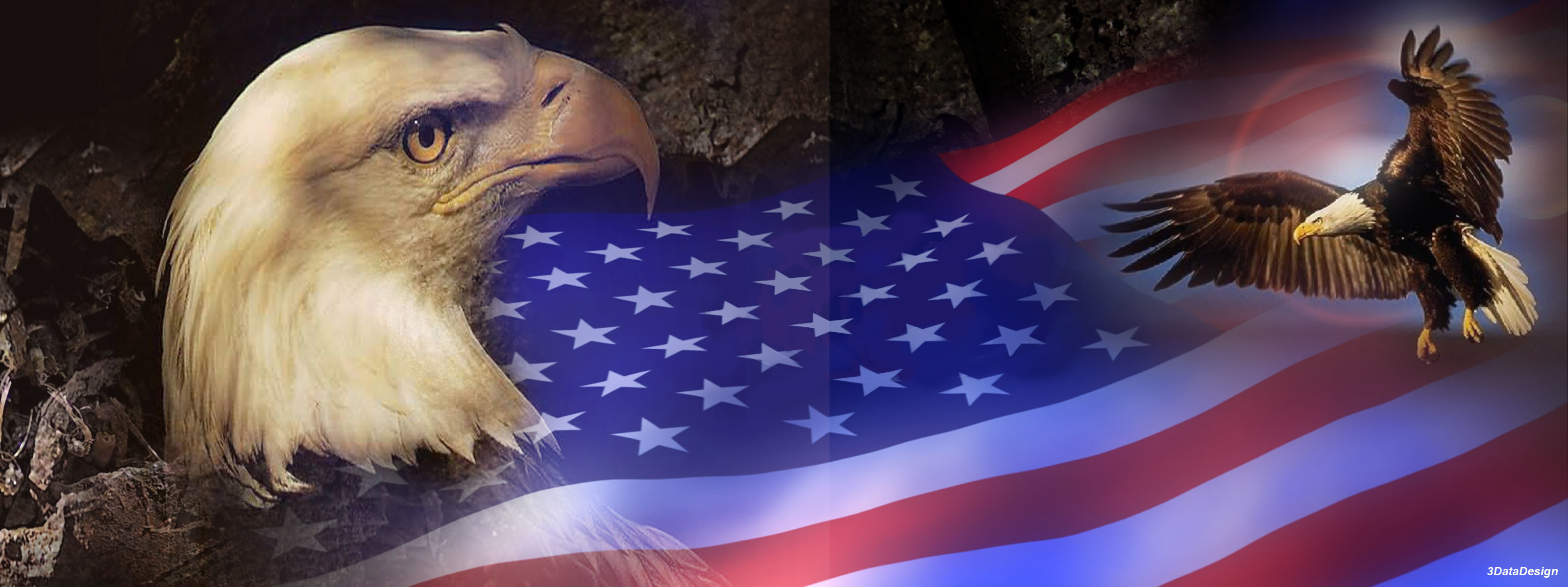 Patriotic Bald Eagle Wallpaper 66 Images