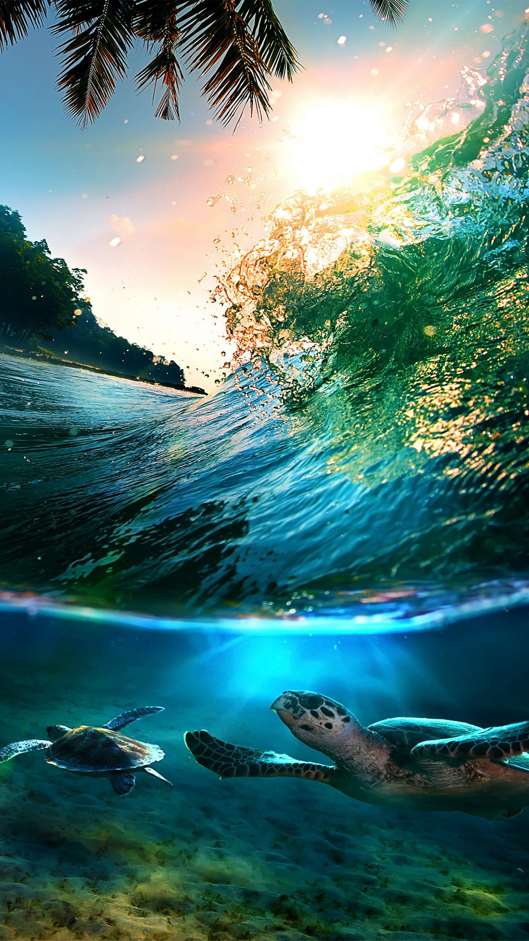Tropical Waves Screensavers and Wallpaper (55+ images)