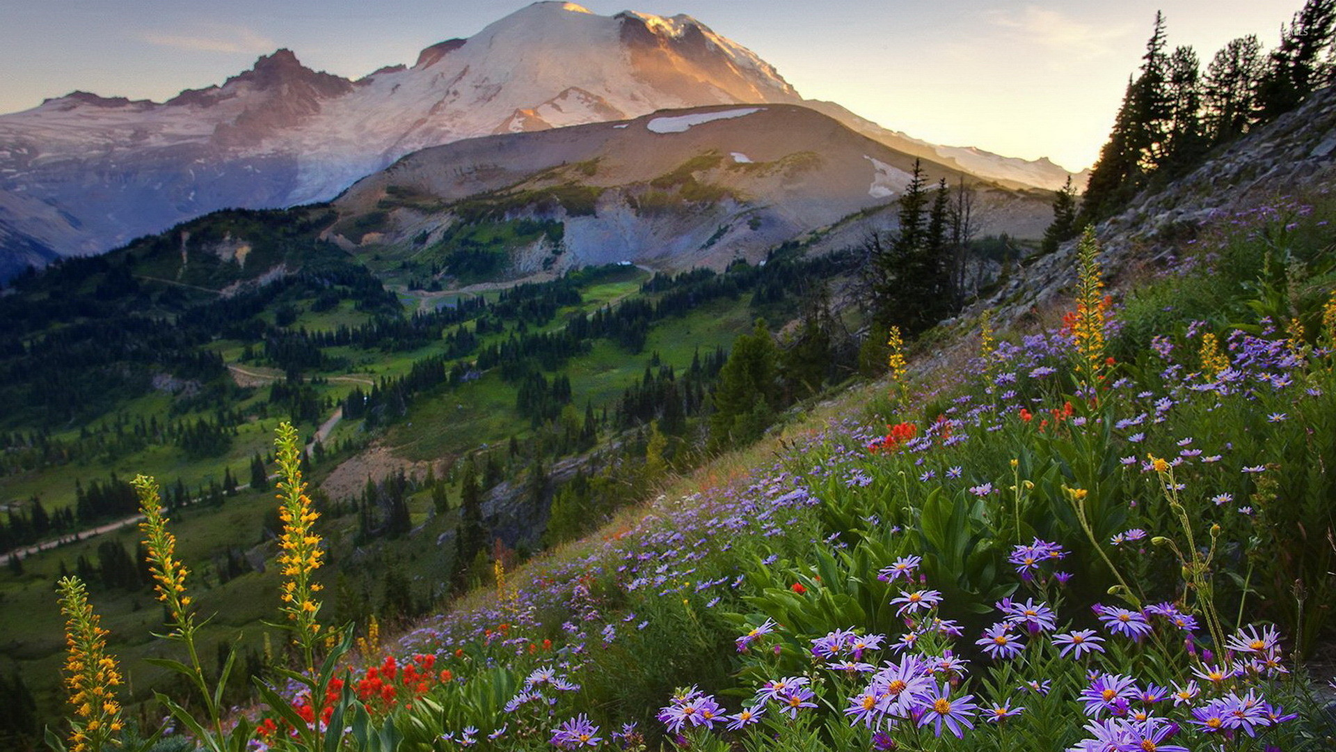 1920x1080 Mount Rainier National Park wallpaper
