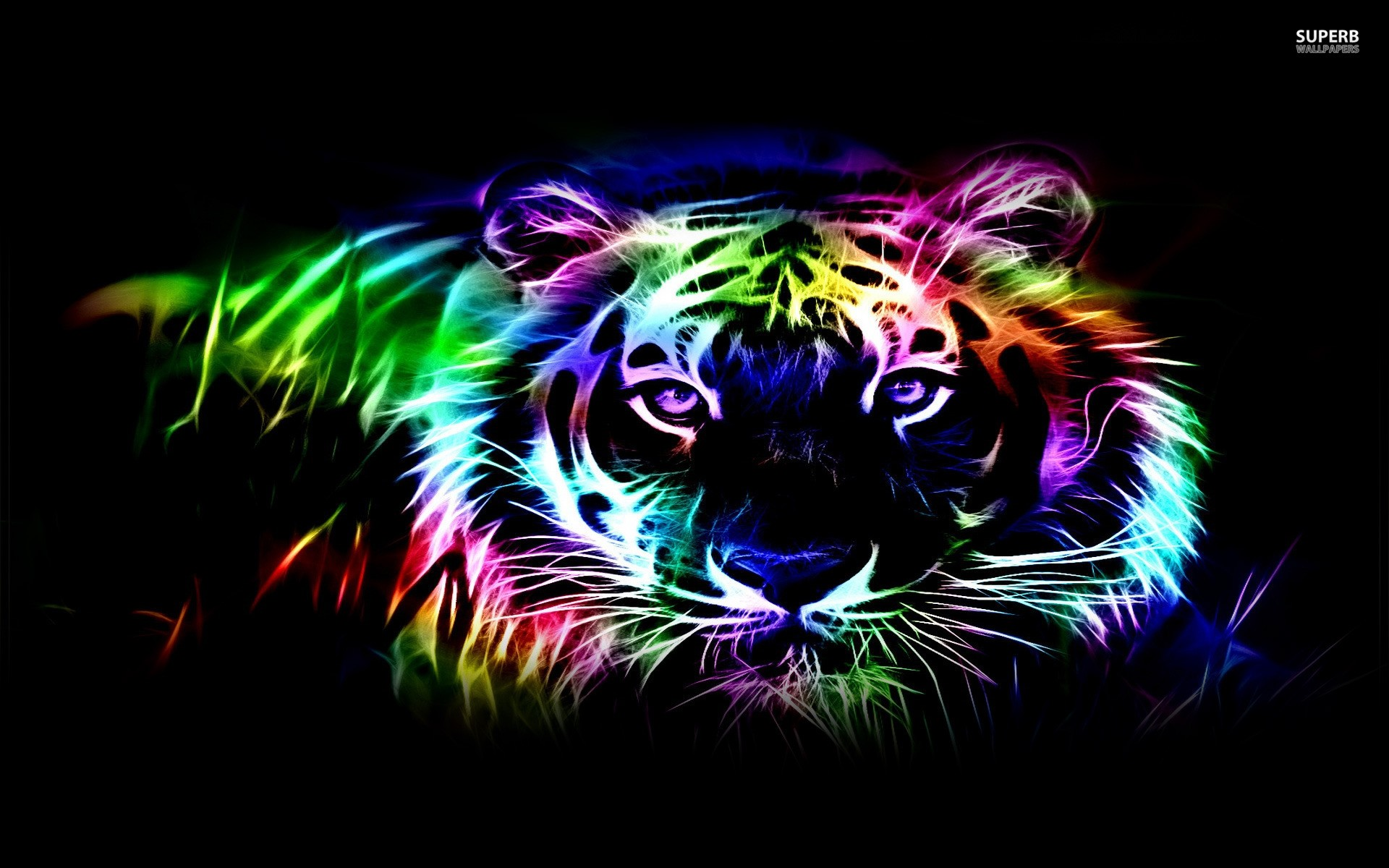 Cool neon wallpaper 54 images - Amazing wallpapers for boys ...