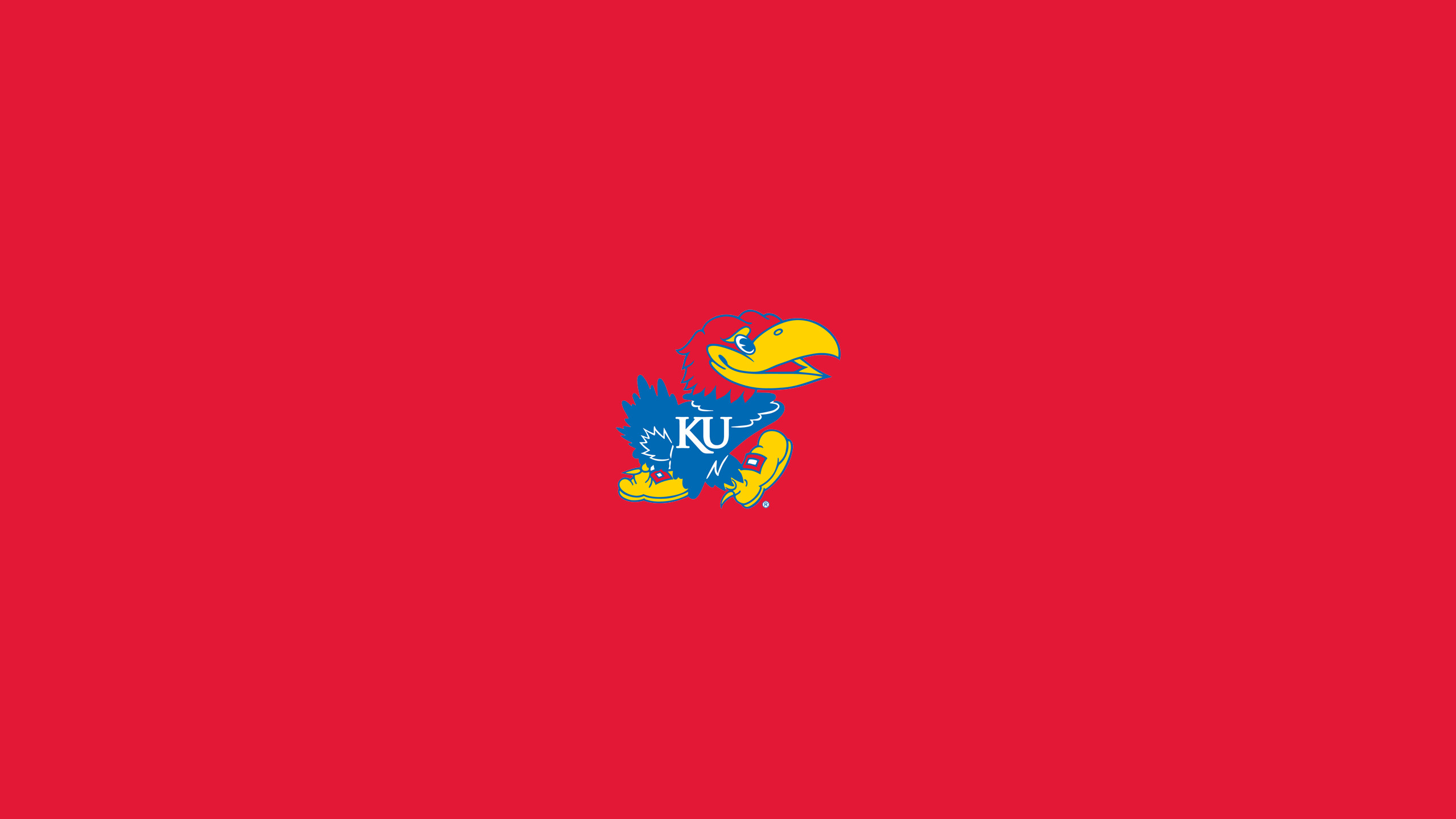 2560x1440 Ku Jayhawks Wallpaper | Free | Download