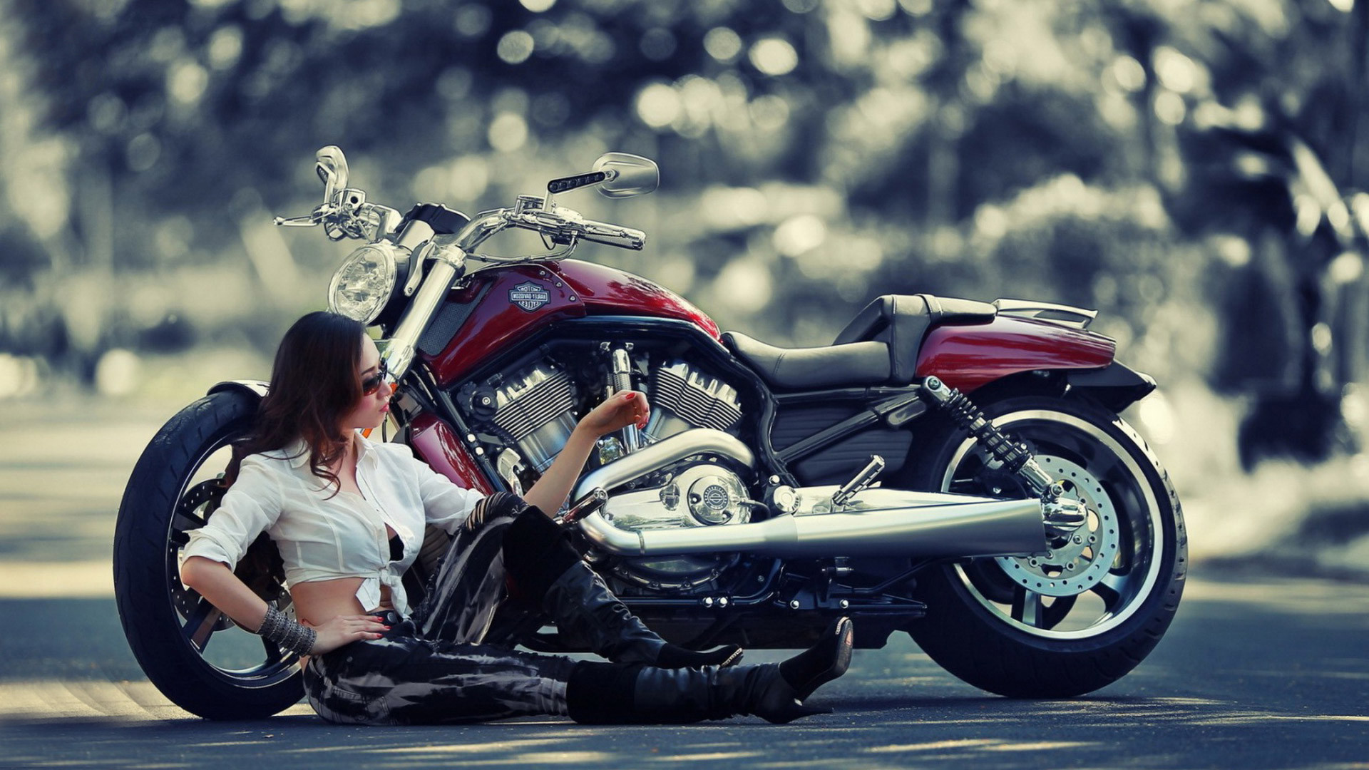 1920x1080 Harley Davidson Bikes Inspirational Harley Davidson Bike Hd Wallpapers This  Wallpaper
