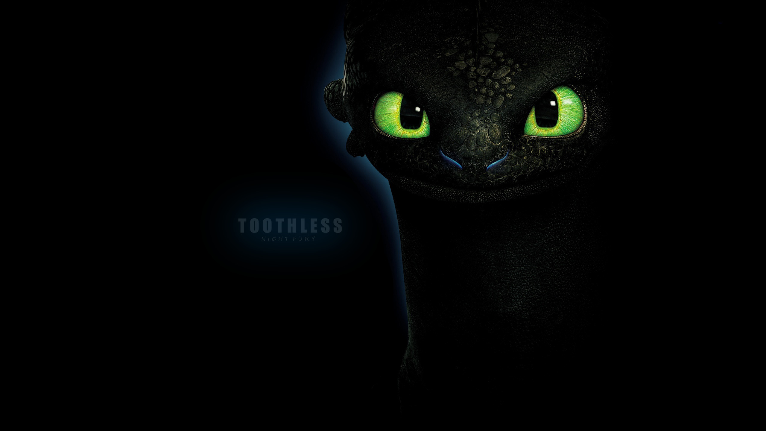 2560x1440 Toothless Wallpaper By Aspire443