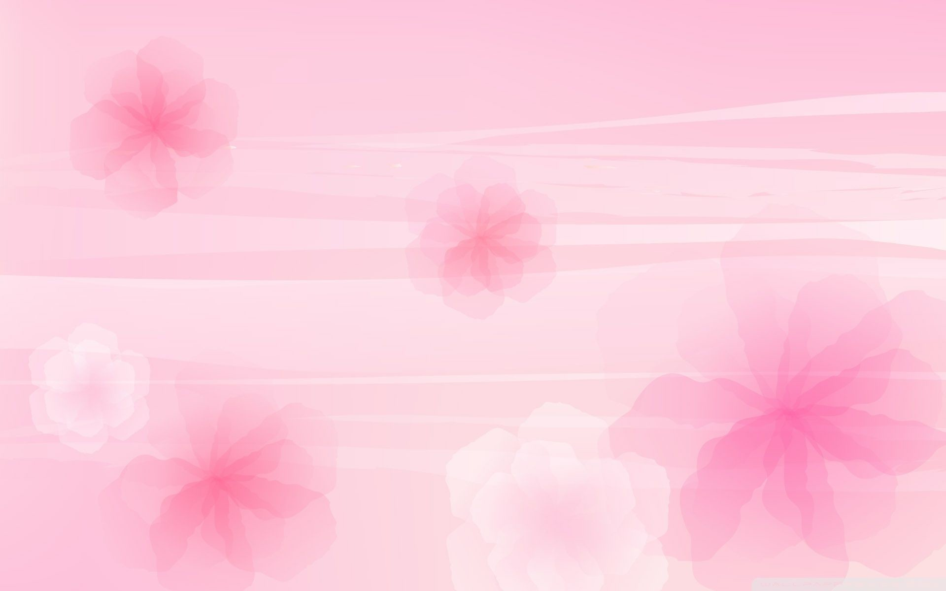 1920x1200 Pink Backgrounds Wallpapers) – Wallpapers and Backgrounds