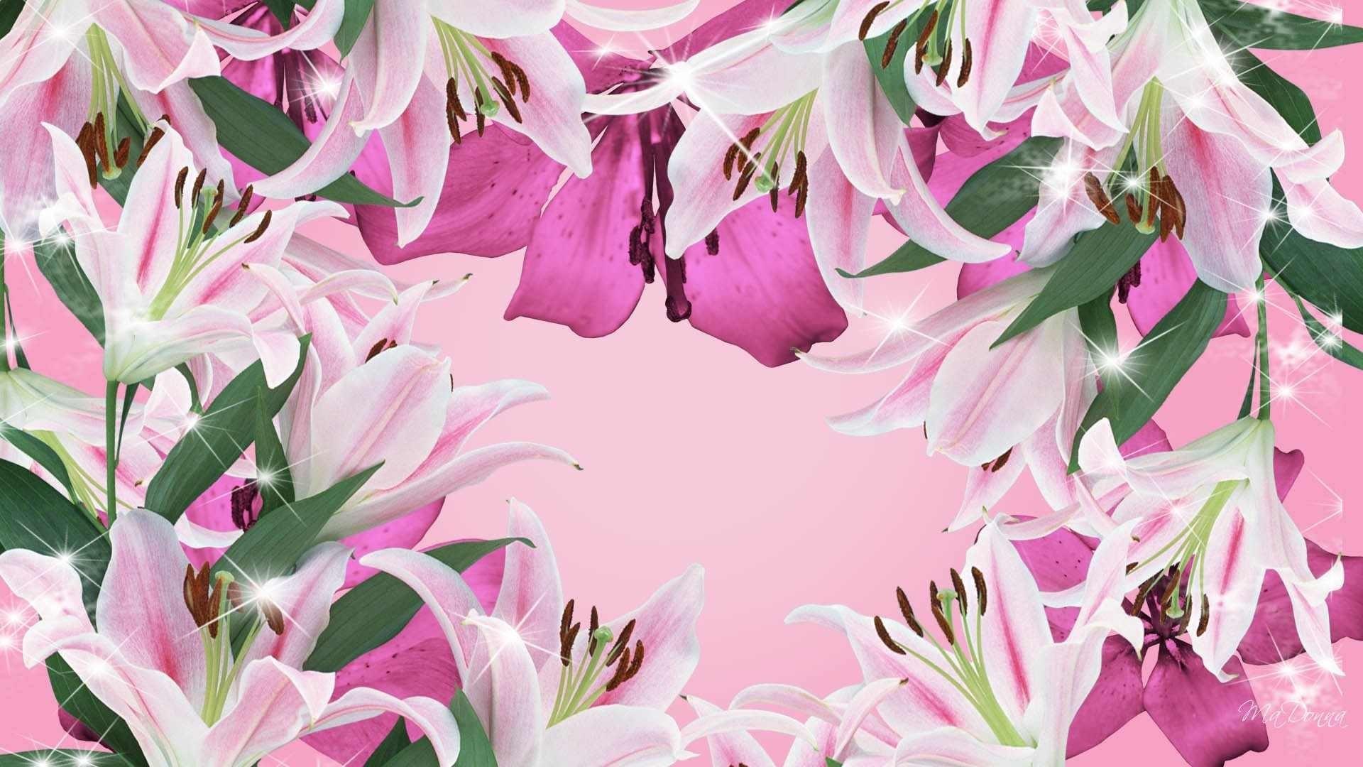 Pretty Flower Wallpaper 49 Images