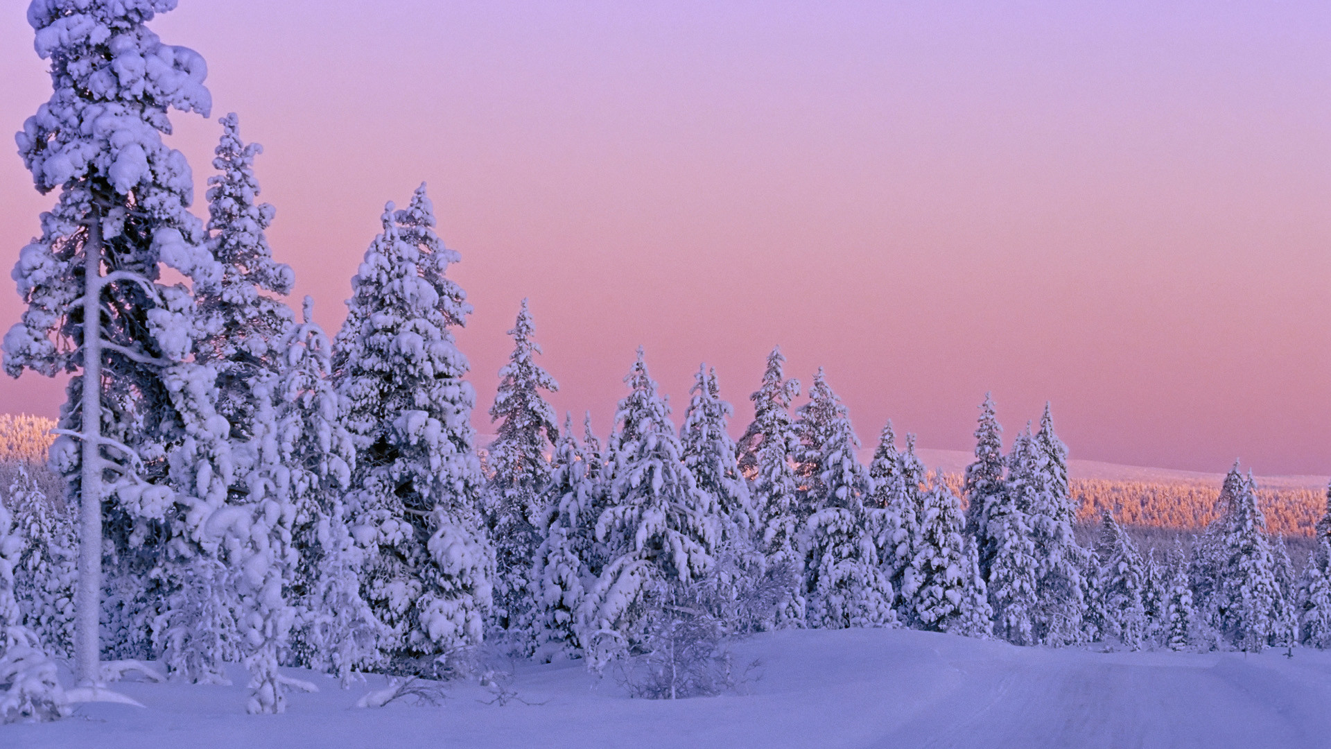 1920x1080 Beautiful Winter Scenes | Winter Snow Sighting Wallpaper Gt Beautiful  Scenery Free ~ Winter .