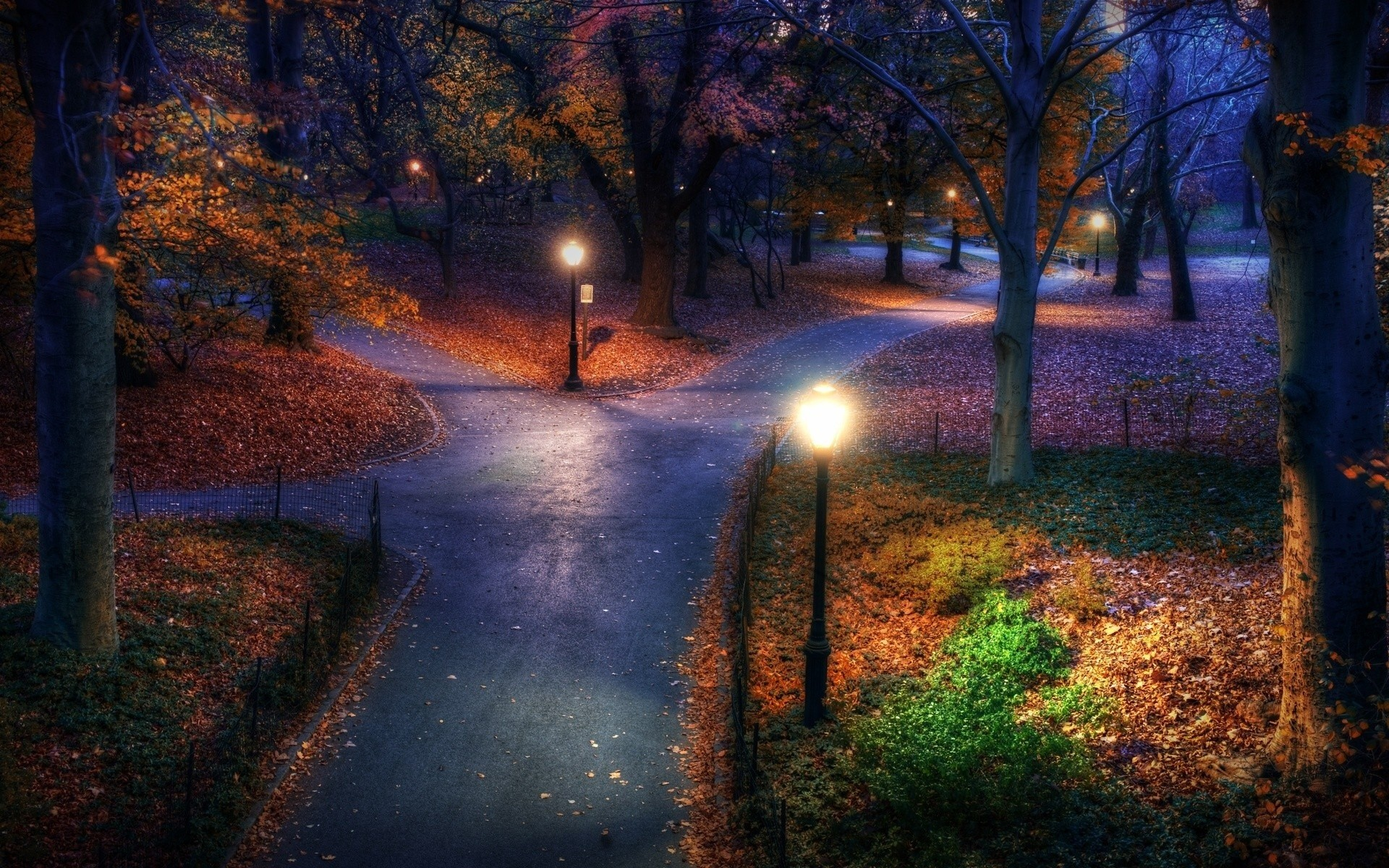 1920x1200 central park, new york, usa, autumn, leaves, evening, park