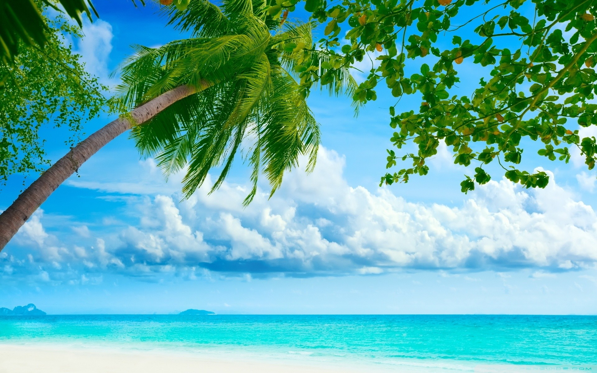 1920x1200 Tropical Beach Resorts HD Wide Wallpaper for Widescreen