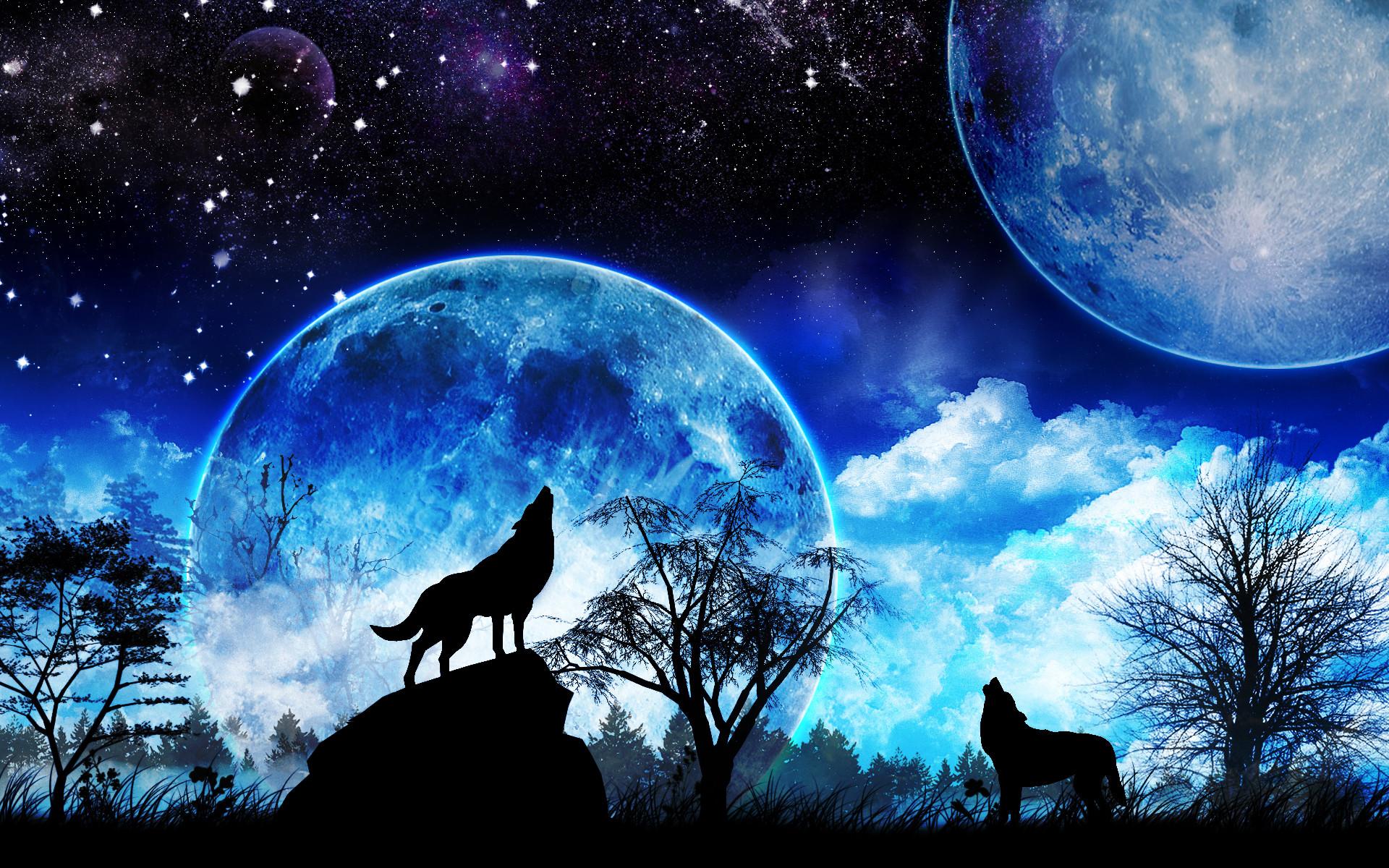 Mythical Galaxy Wolf Night Sky Galaxy Cool Wallpaper