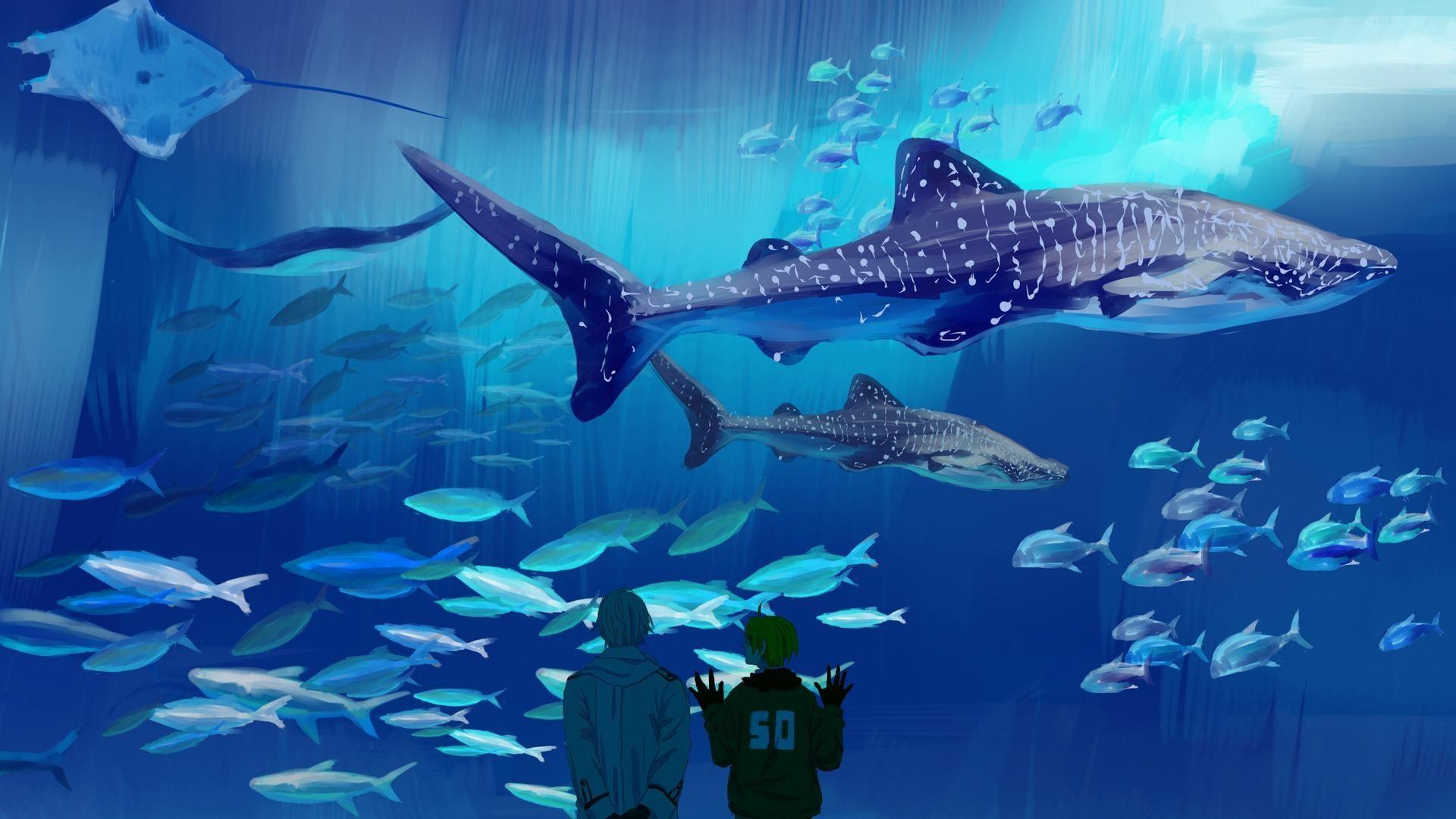 Saltwater Fish Wallpaper (58+ Images