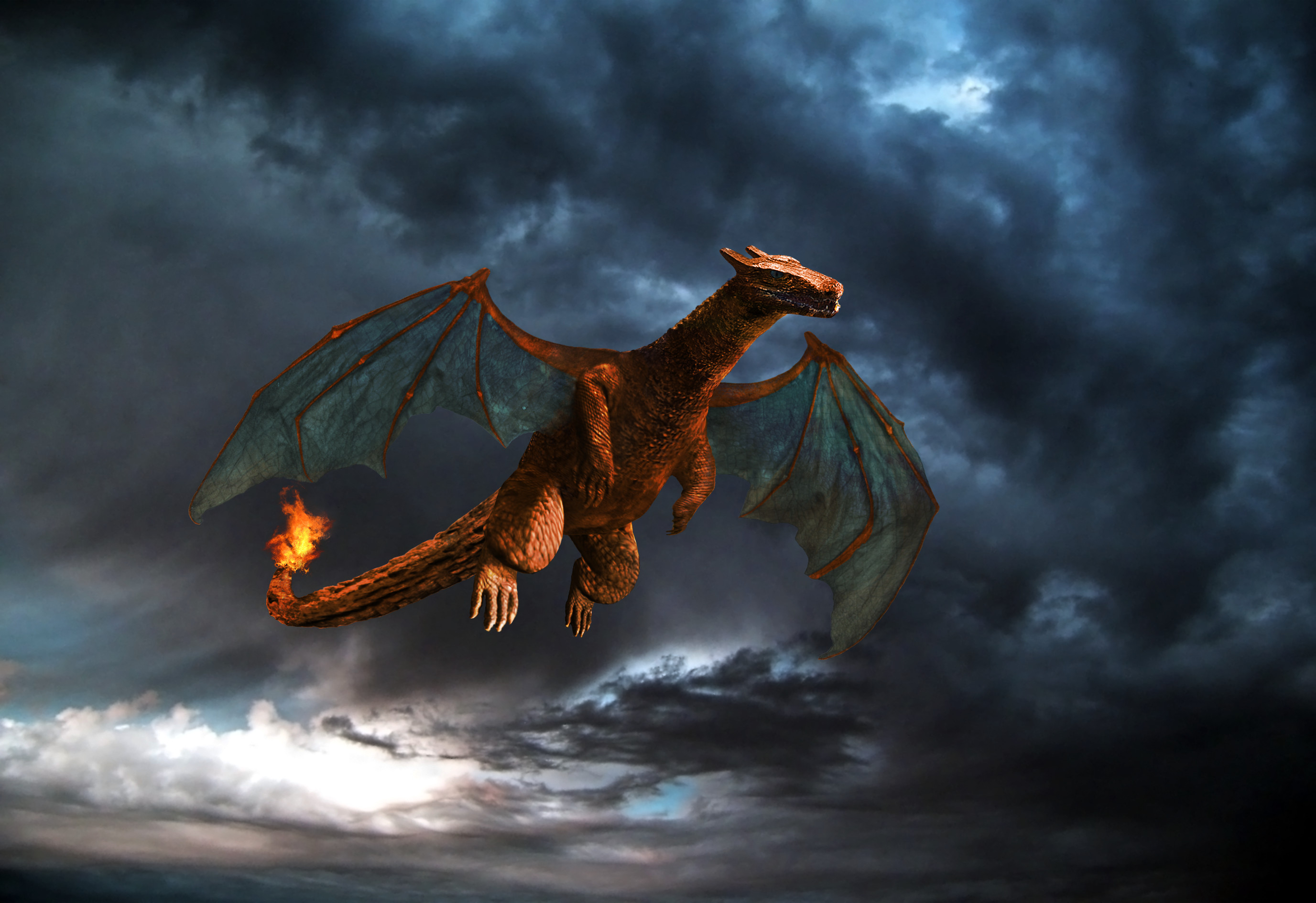 2753x1890 ... Real life Charizard (Light) by WrathOfSithis