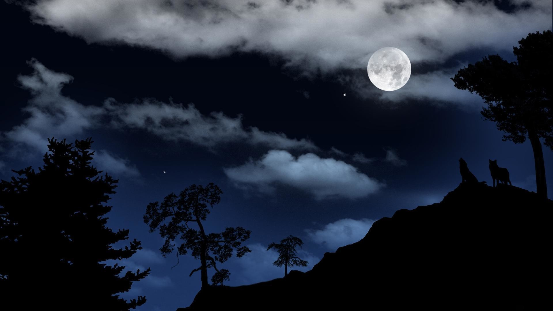 wolf howling at the moon wallpaper 66 images