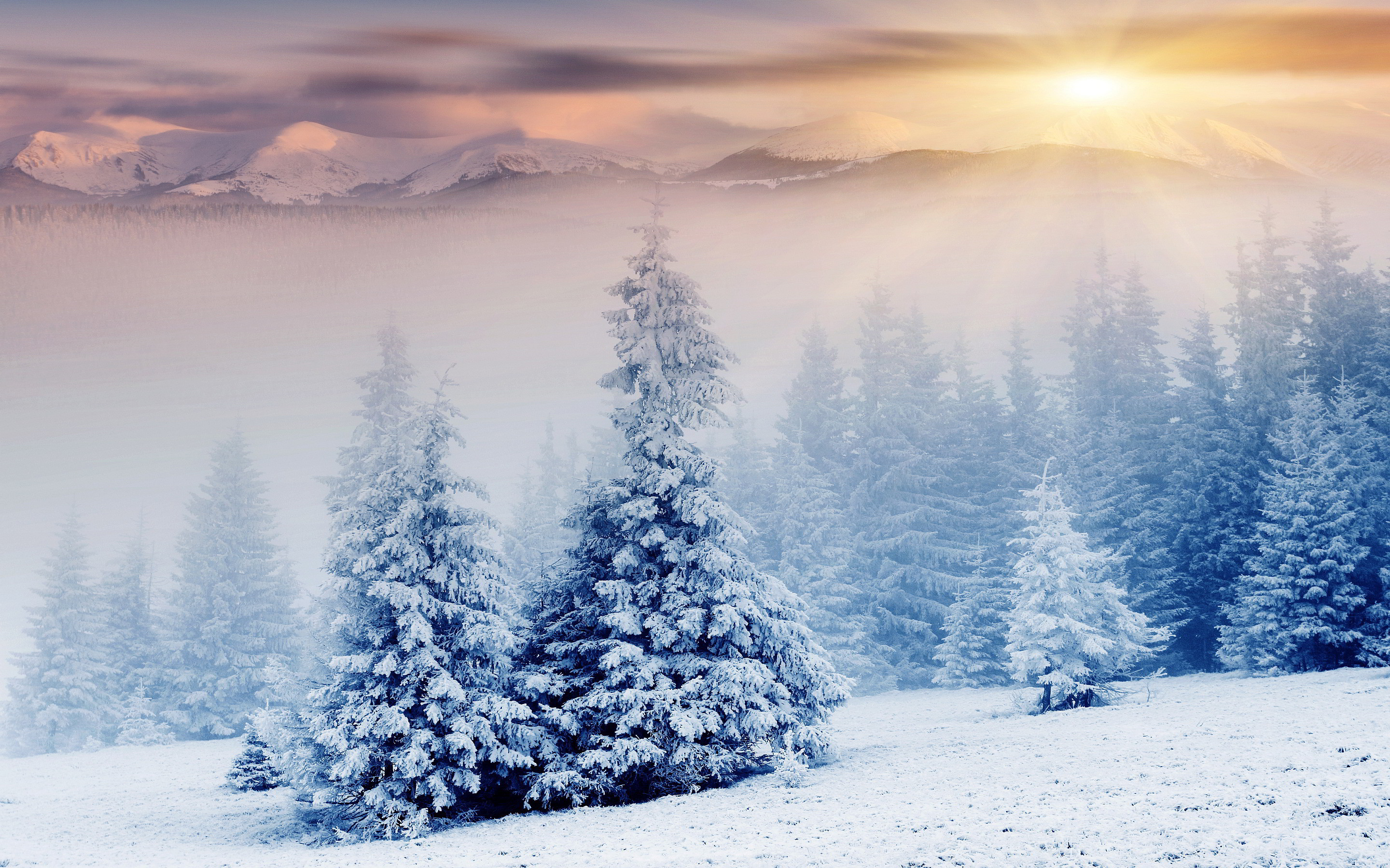 2880x1800  File Name: #749900 Beautiful Winter Snow-wallpaper-30.jpg
