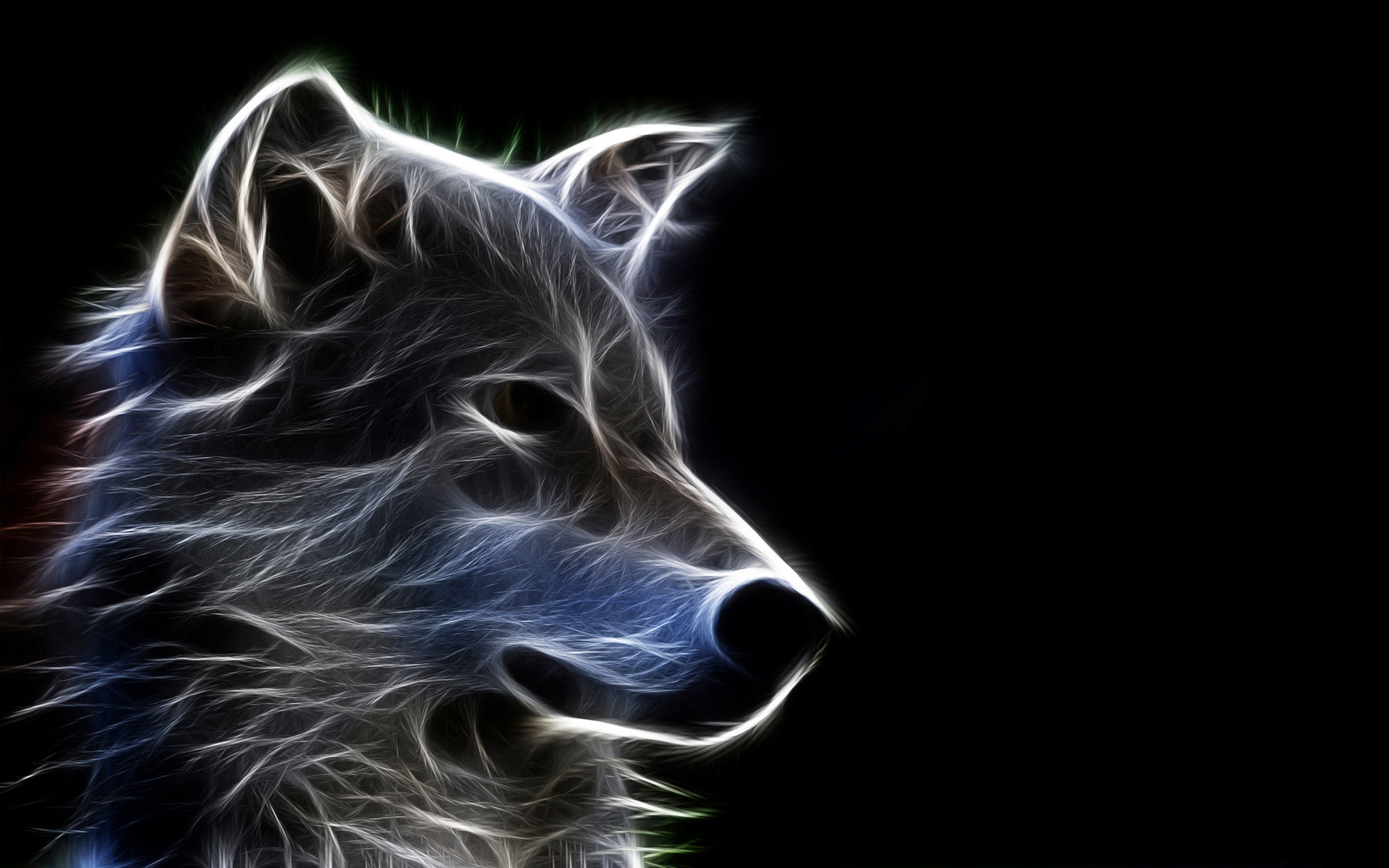 Neon Wolf Wallpaper (54+ images)