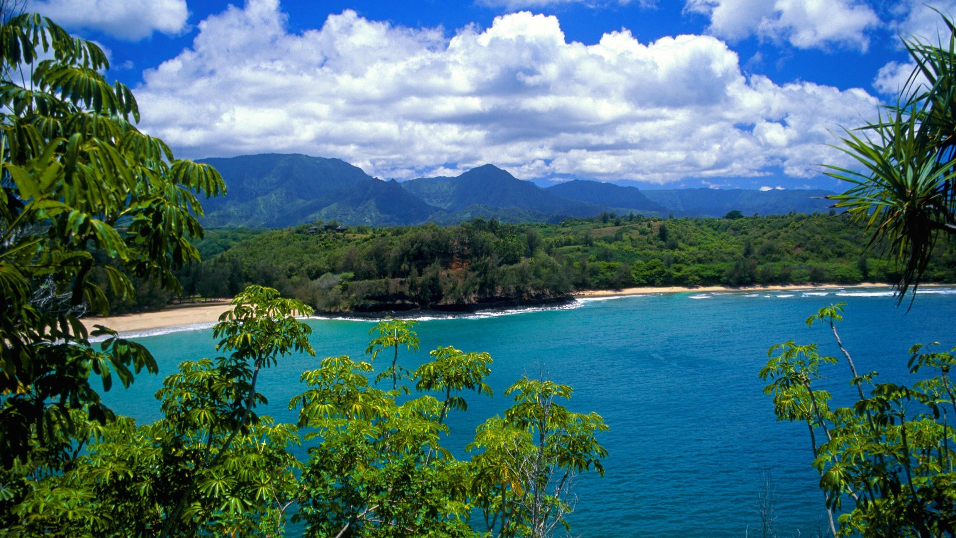 Hawaii Beach Wallpaper 58 Images