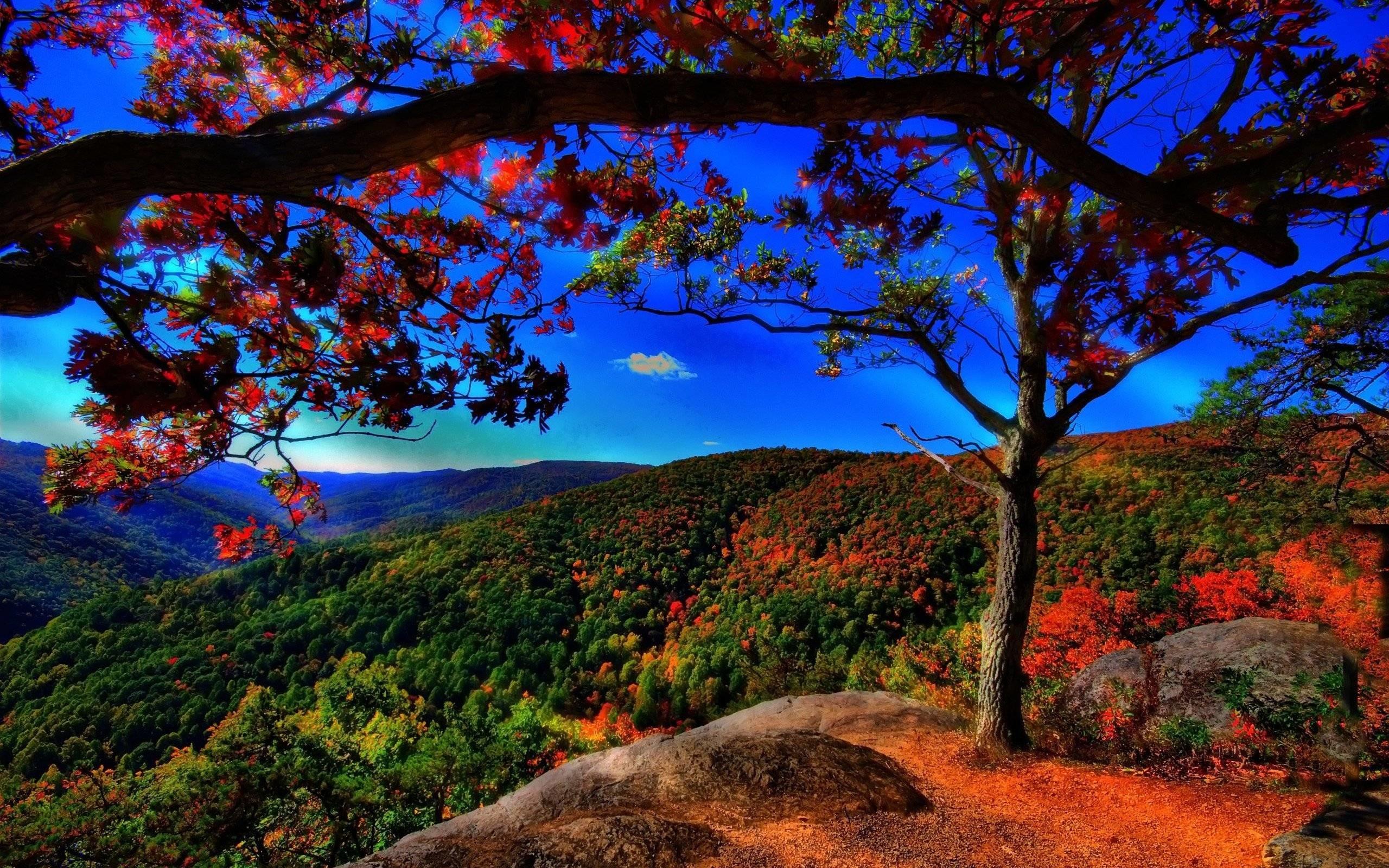 beautiful nature scenery wallpaper (56+ images)