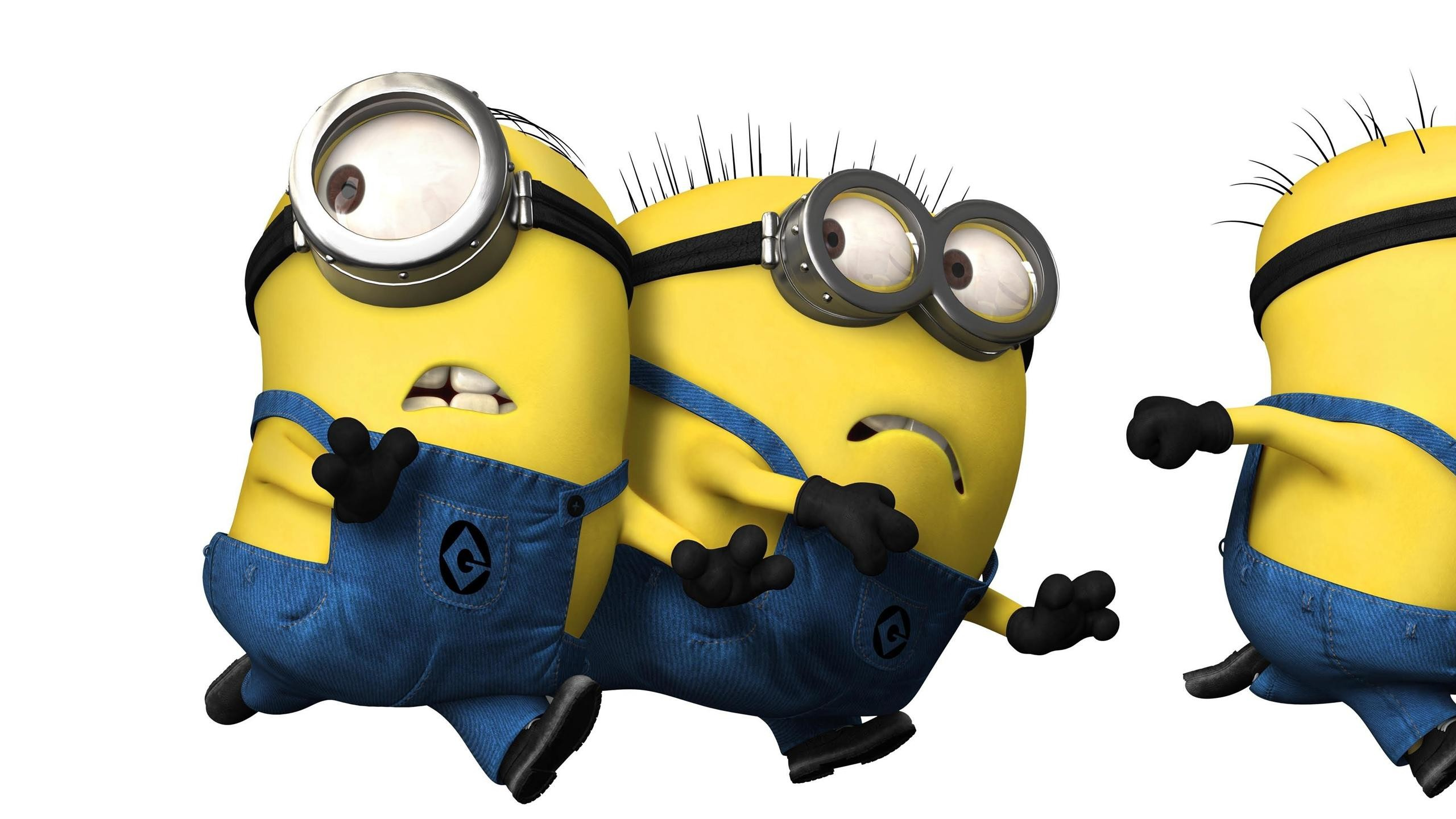 2560x1440 Cartoons Despicable Me Funny Wallpapers Images Photos 2560×1440 Minion  Despicable Me Wallpapers (38