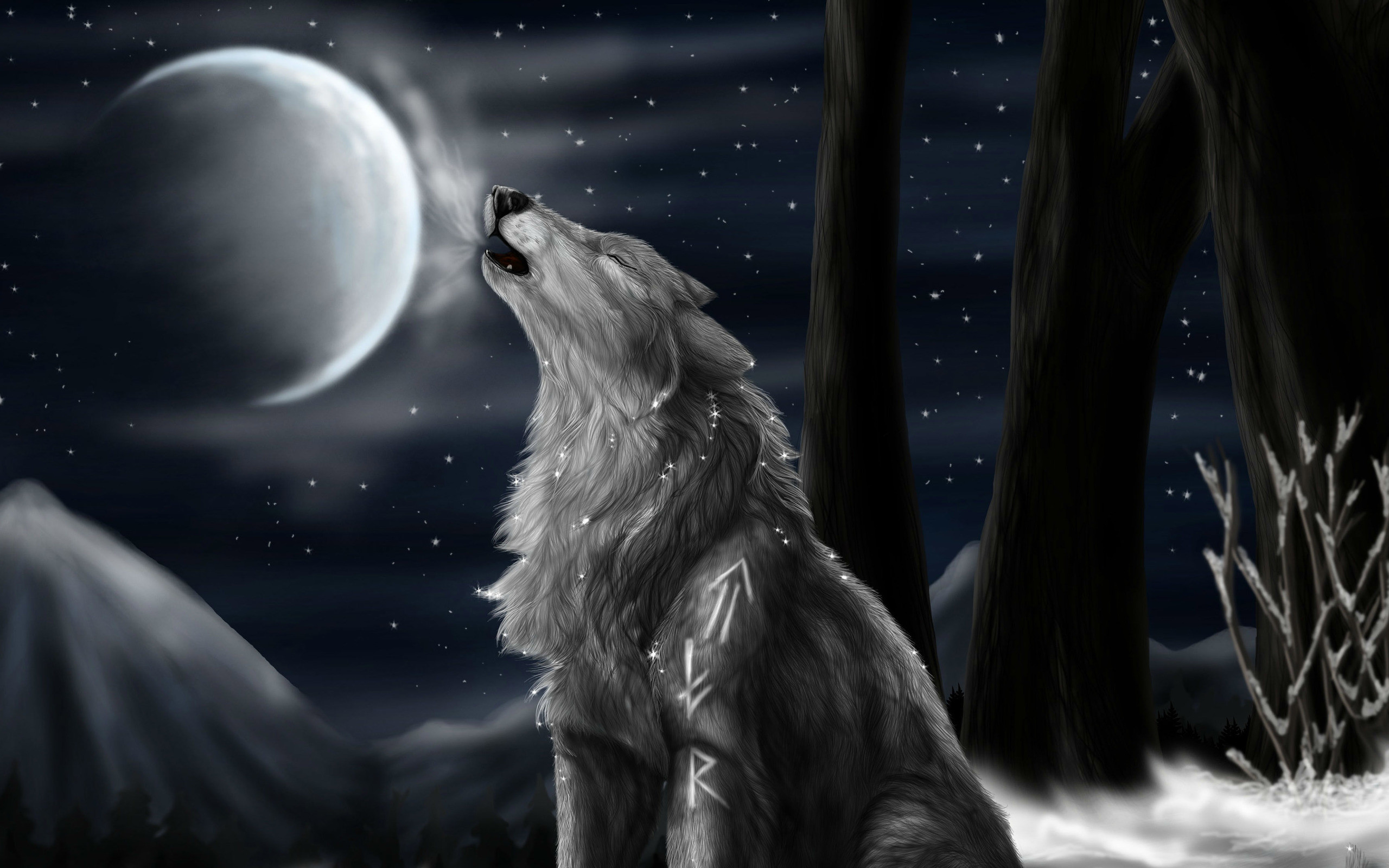 2560x1600 ... wolf HD Wallpaper  Howling ...
