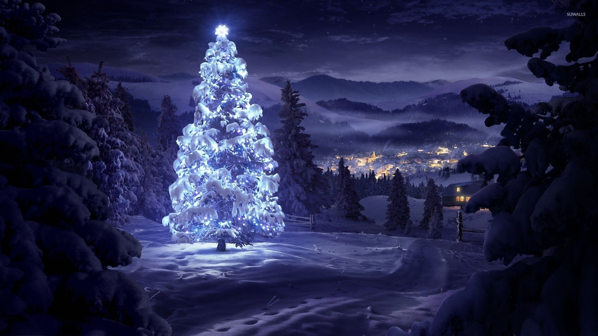 1920x1080 Bright star on top of a beautiful snowy tree in the forest wallpaper   jpg