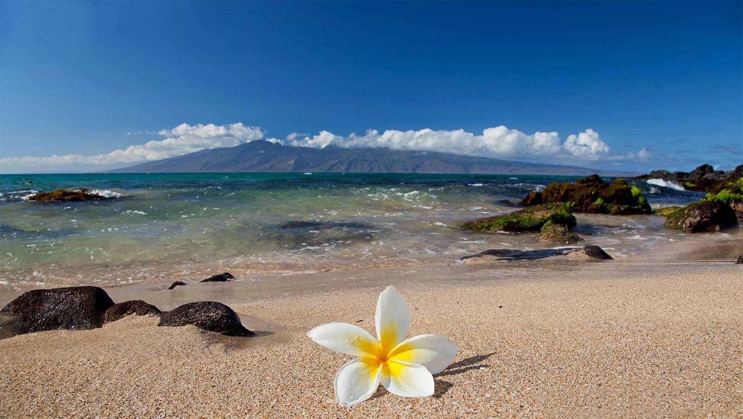 How To Get To Maui From Big Island